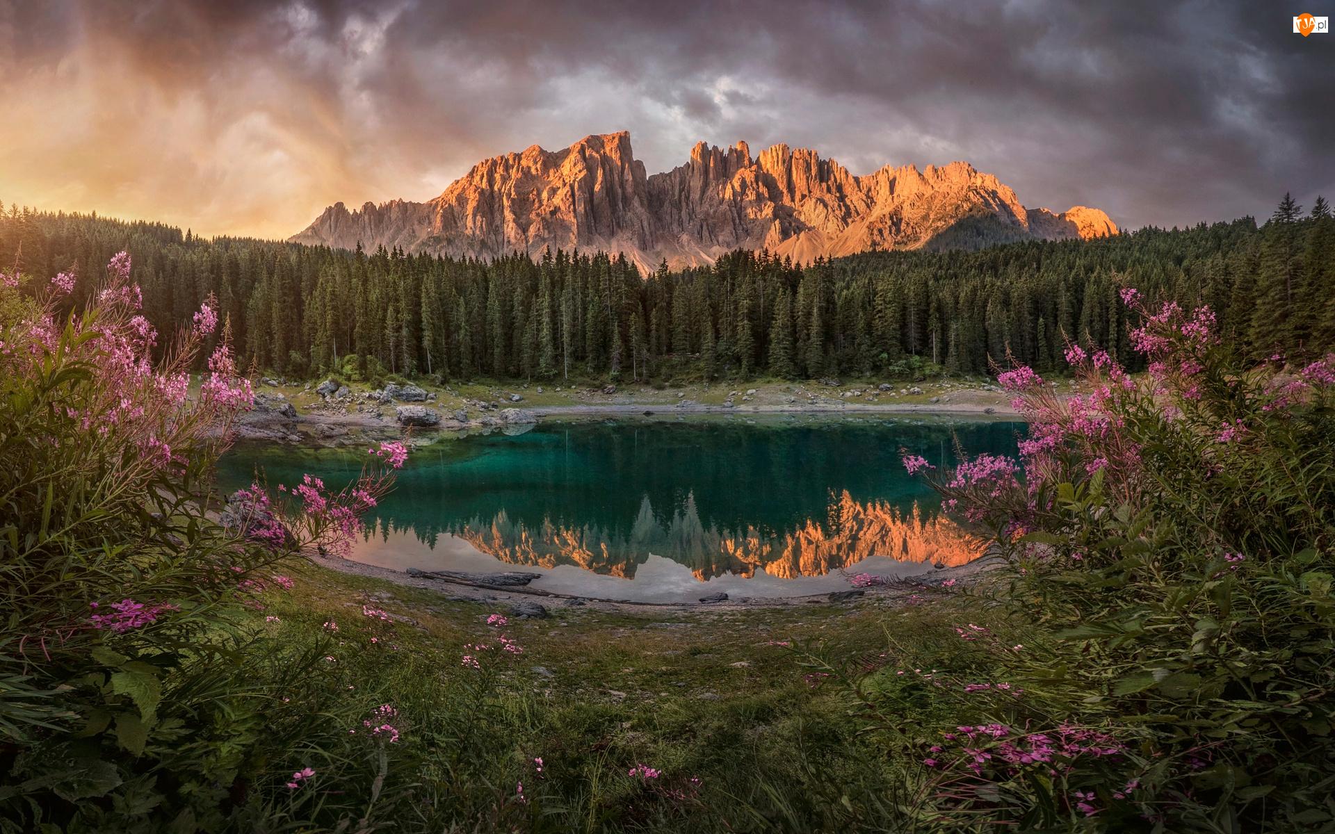 Lago di Carezza, Góry, Włochy, Jezioro, Południowy Tyrol, Dolomity, Alpy