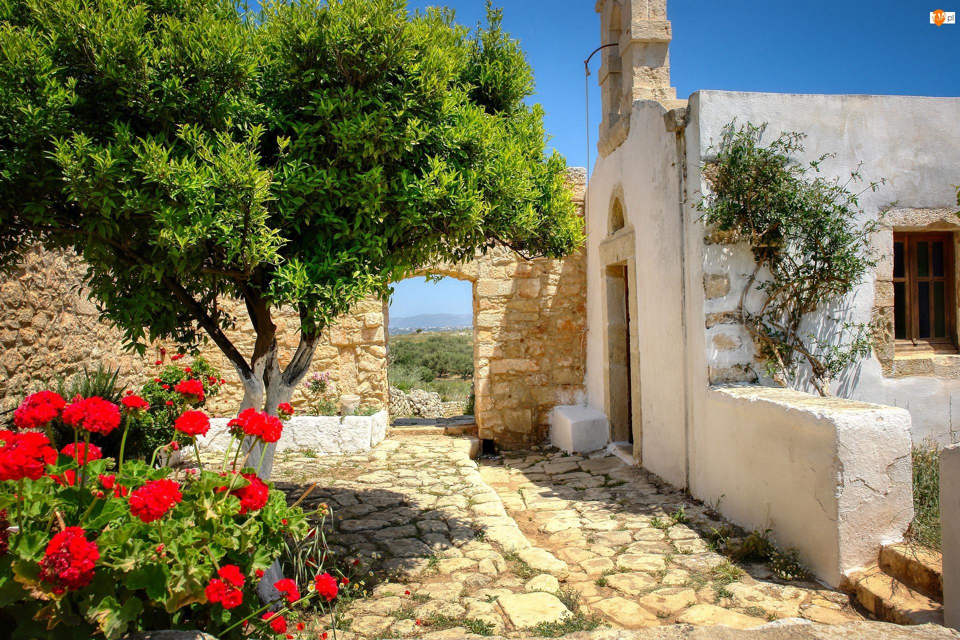 Dziedziniec, Mur, Pelargonie, Dom, Kwiaty, Drzewo, Brama