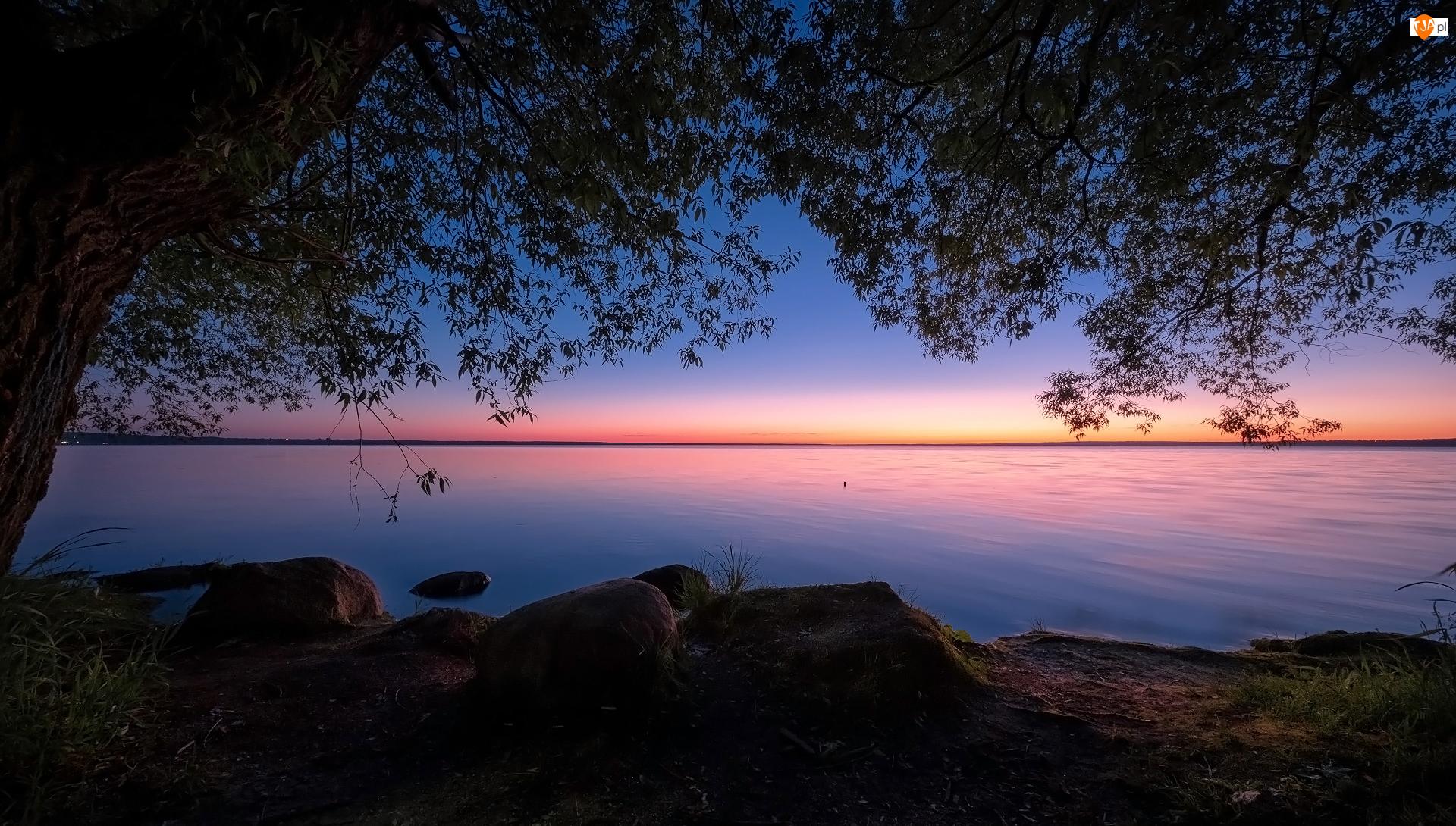 Zachód słońca, Jezioro, Drzewo, Kamienie
