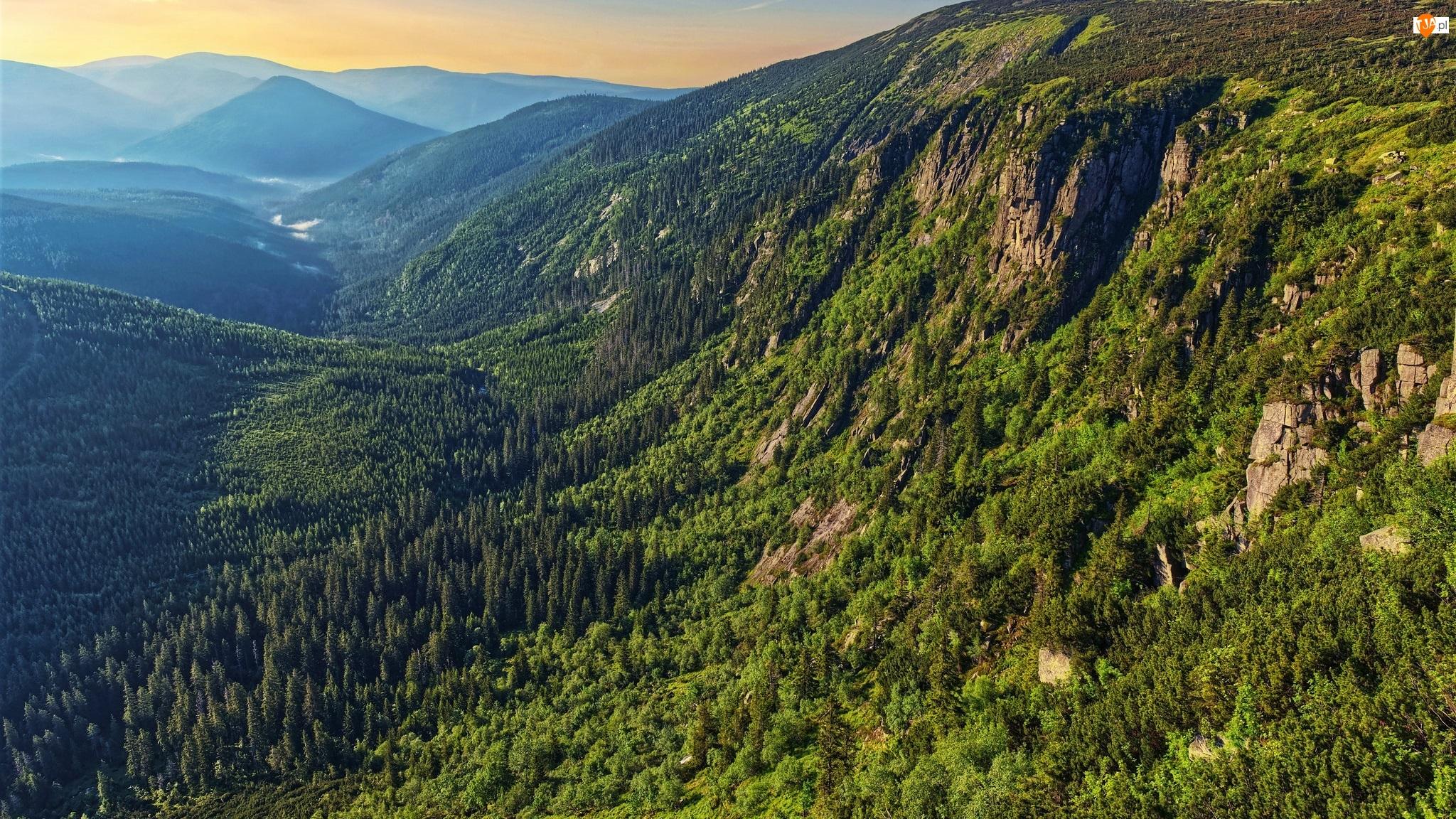 Góry, Zalesione, Lasy, Polska, Karkonosze, Dolina