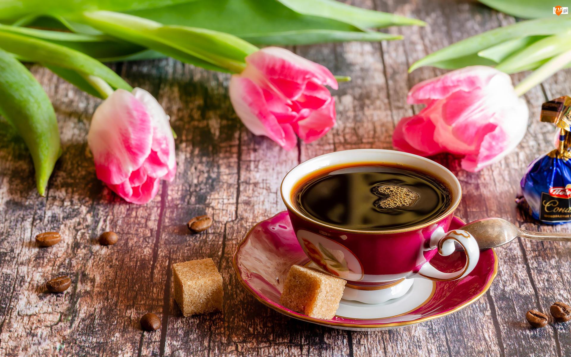 Tulipany, Kawa, Filiżanka, Cukier