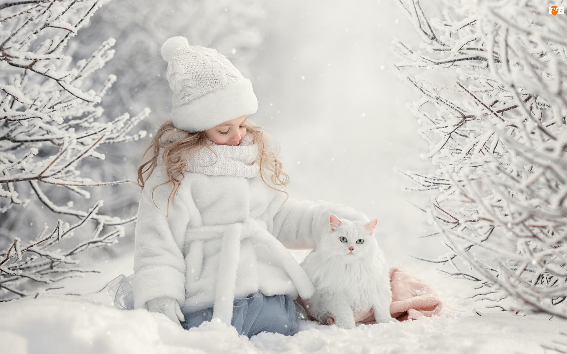 Zima, Dziewczynka, Biały, Kot