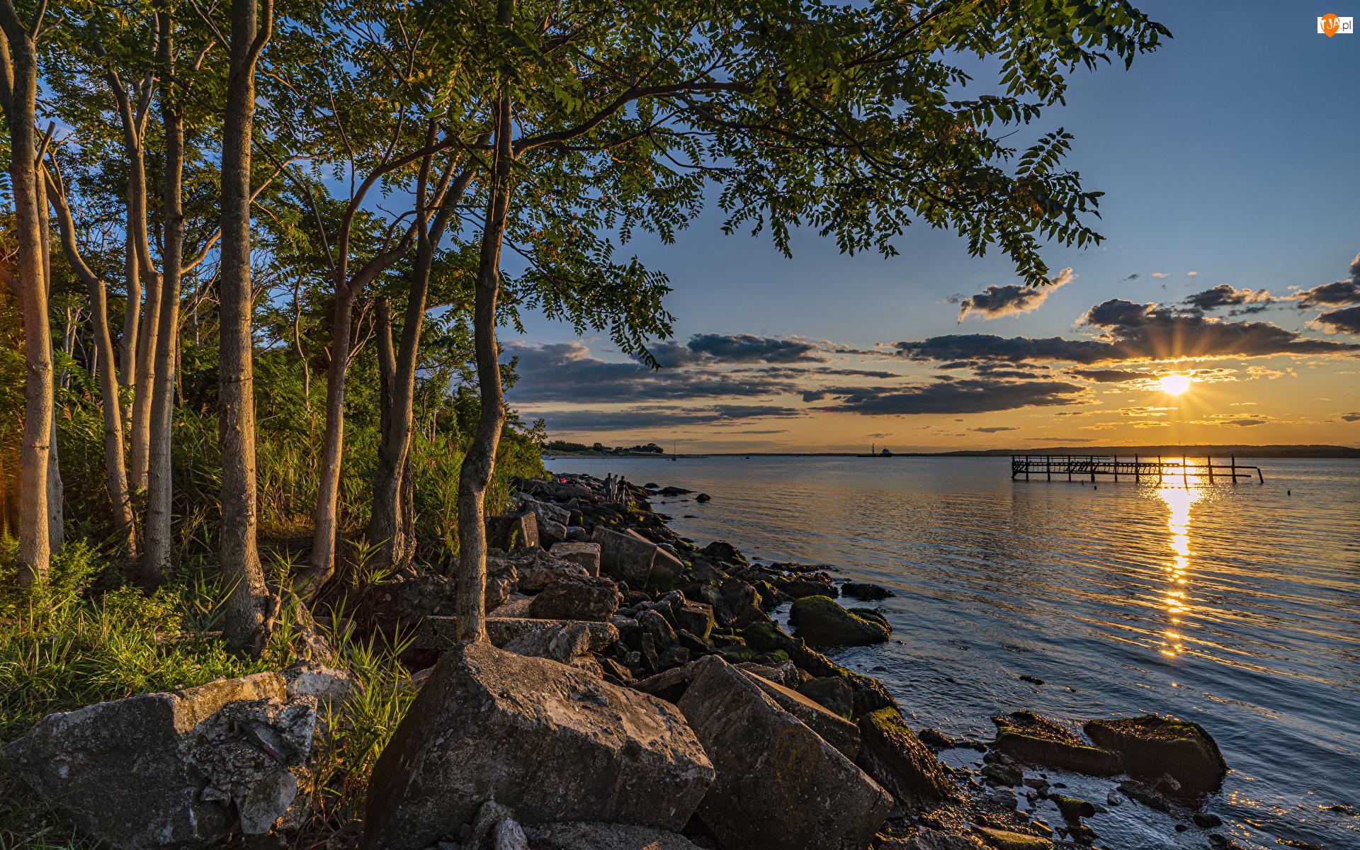Drzewa, Wschód słońca, Jezioro, Kamienie