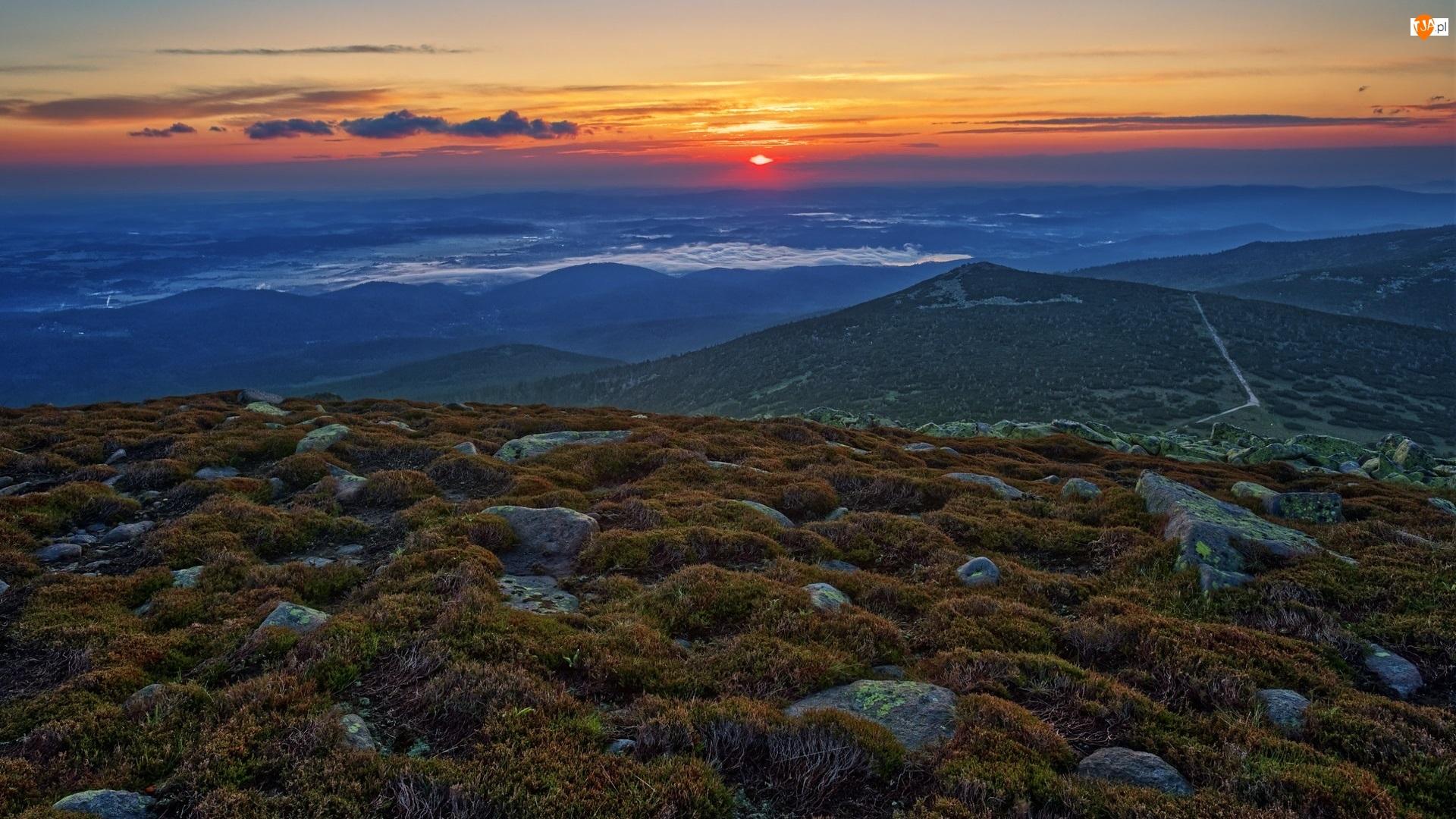 Wzgórza, Rośliny, Polska, Wschód słońca, Karkonosze, Góry, Kamienie