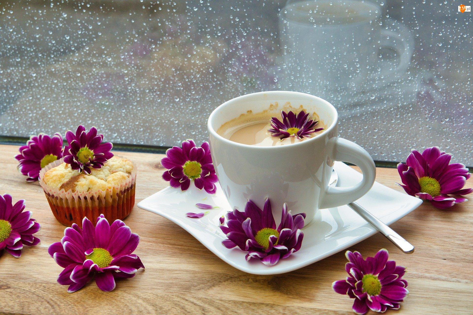 Kawa, Deszcz, Muffin, Chryzantemy, Ciastko, Kwiaty