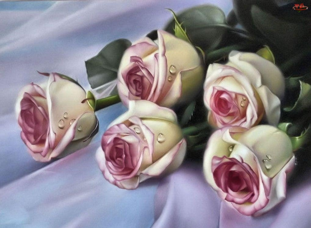 Bukiet, Wiśniowych, Róż, Biało