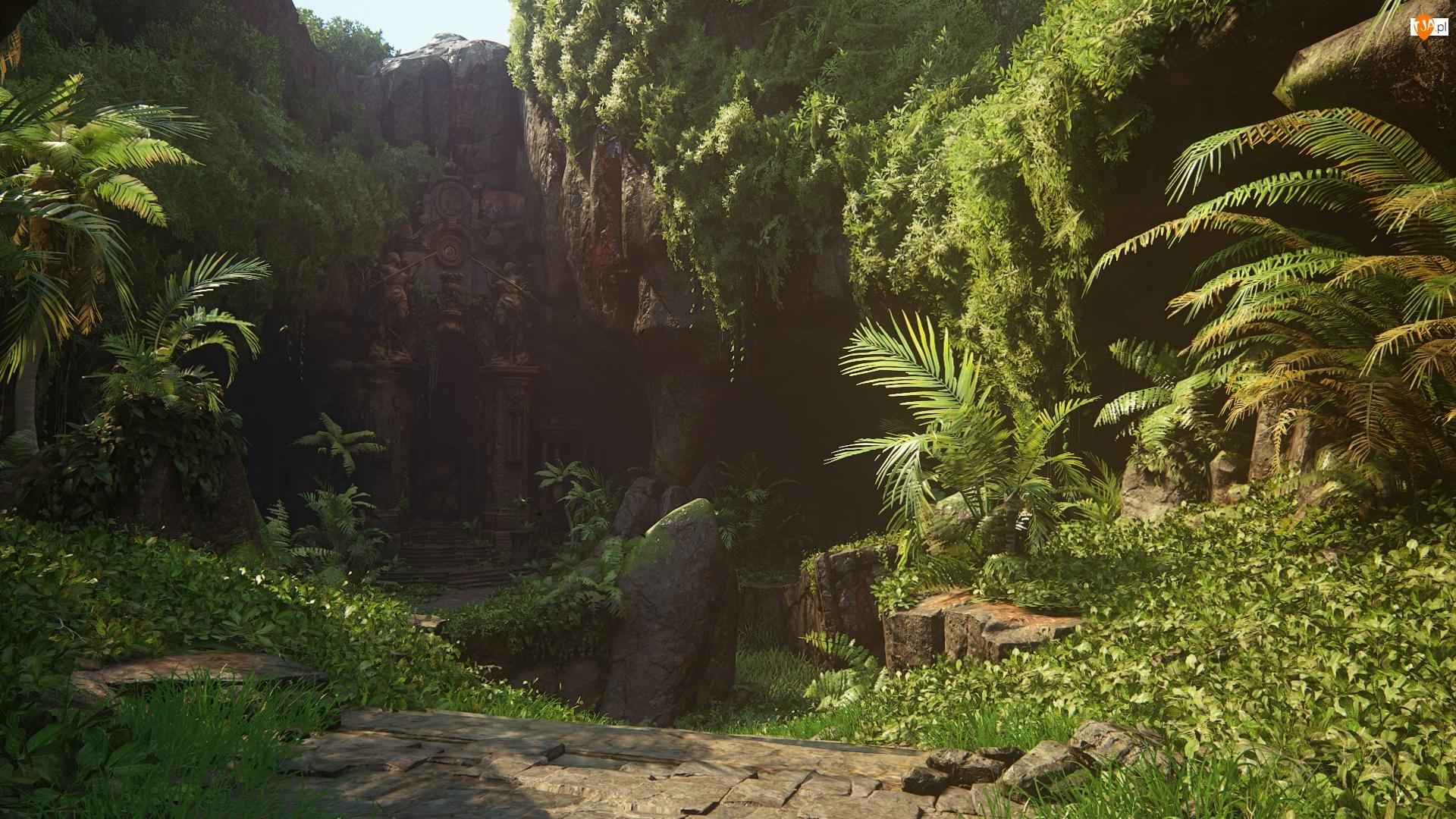 Dżungla, Las, Skały, Fantasy, Roślinność, Świątynia