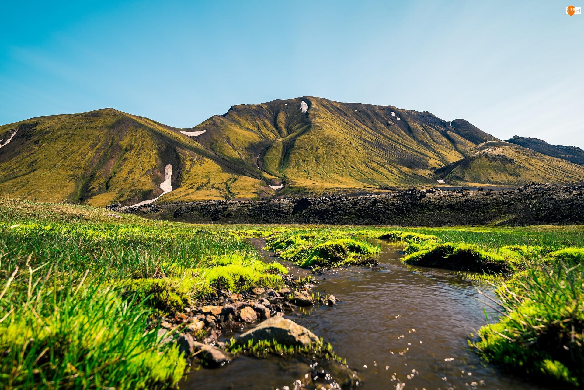 Rzeka, Trawa, Góry, Islandia, Zielona