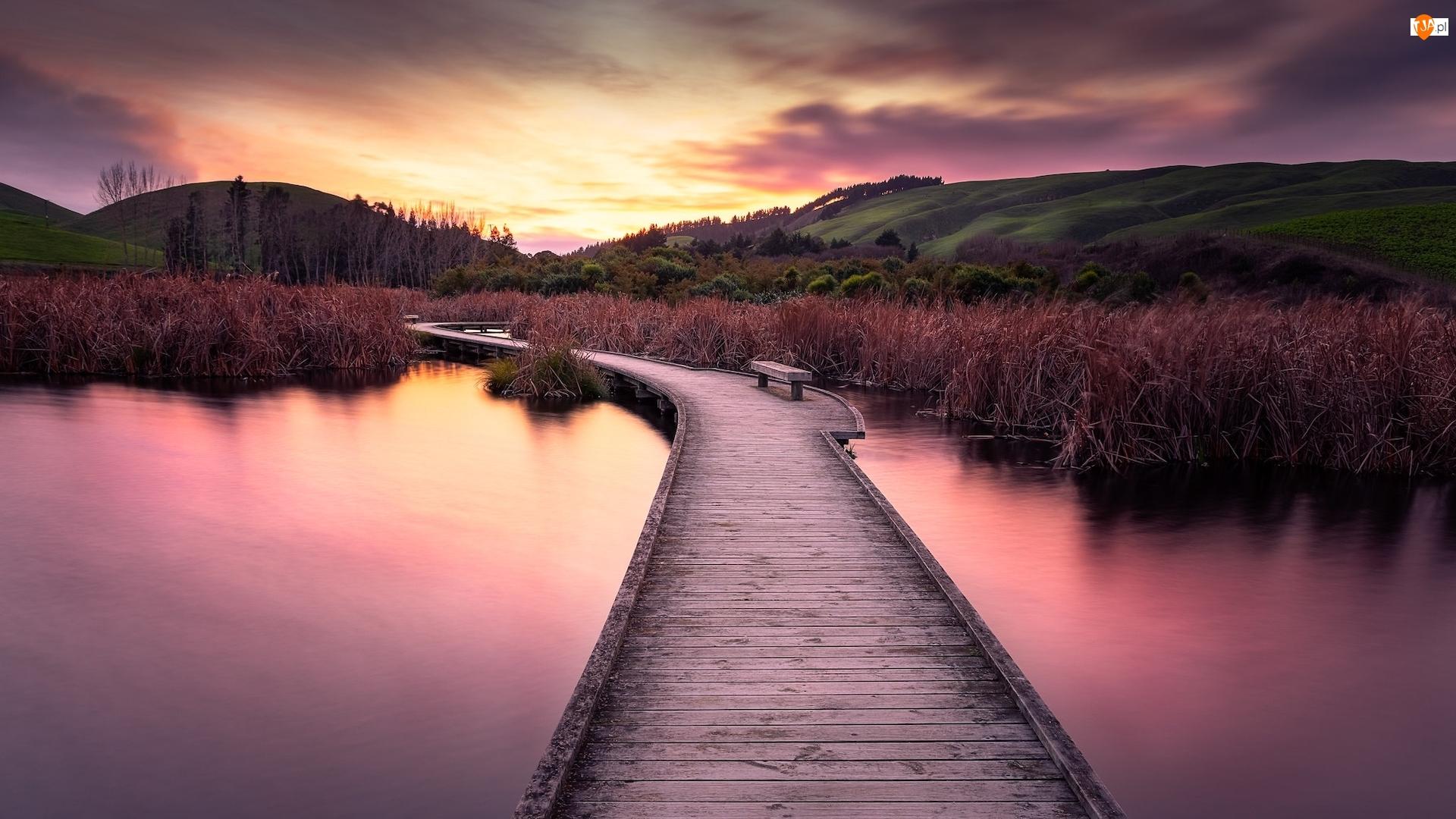 Bagno, Pekapeka Wetlands, Poukawa, Wzgórza, Pomost, Hawkes Bay, Rezerwat przyrody, Wschód słońca, Trzciny, Mokradło, Nowa Zelandia