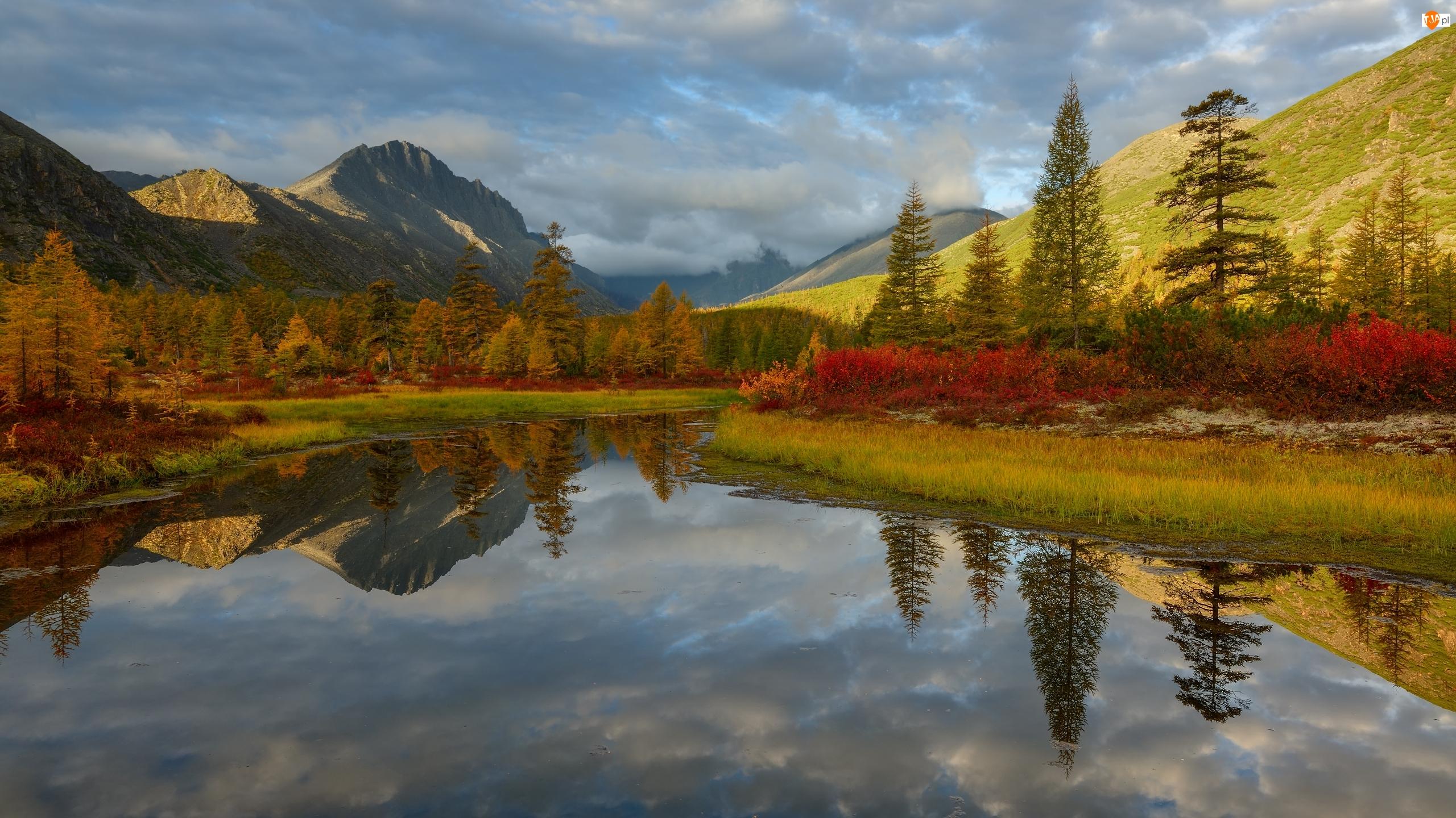 Odbicie, Jezioro Jacka Londona, Roślinność, Chmury, Drzewa, Góry, Kołyma, Jesień, Rosja