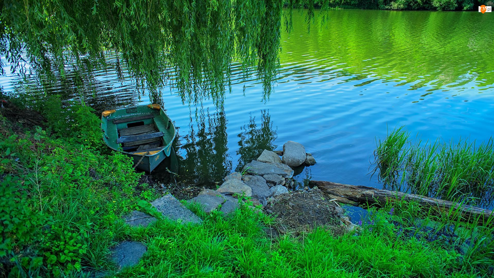 Rzeka, Roślinność, Wierzba płacząca, Łódka, Kamienie