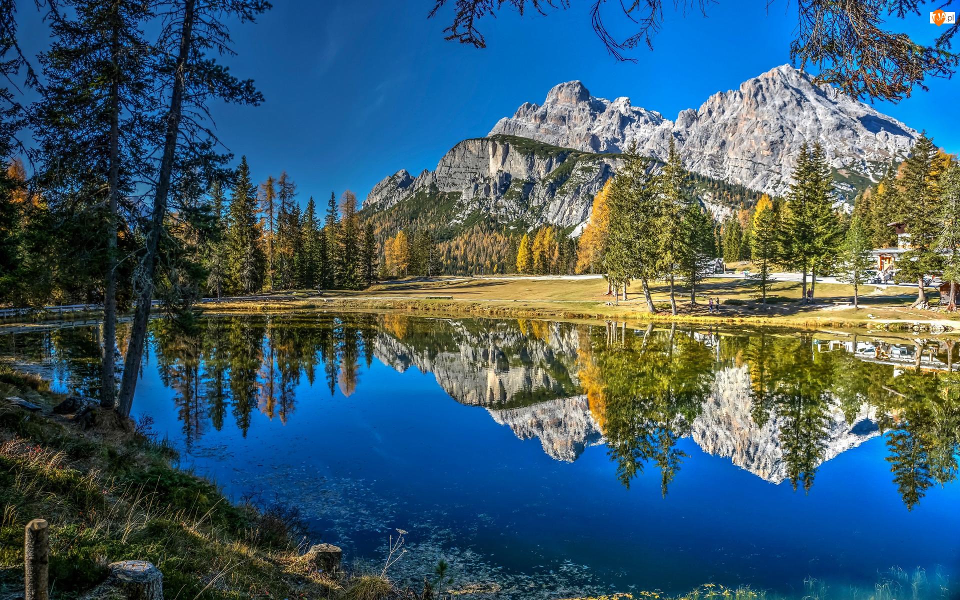 Drzewa, Jesień, Jezioro, Odbicie, Góry, Trawa