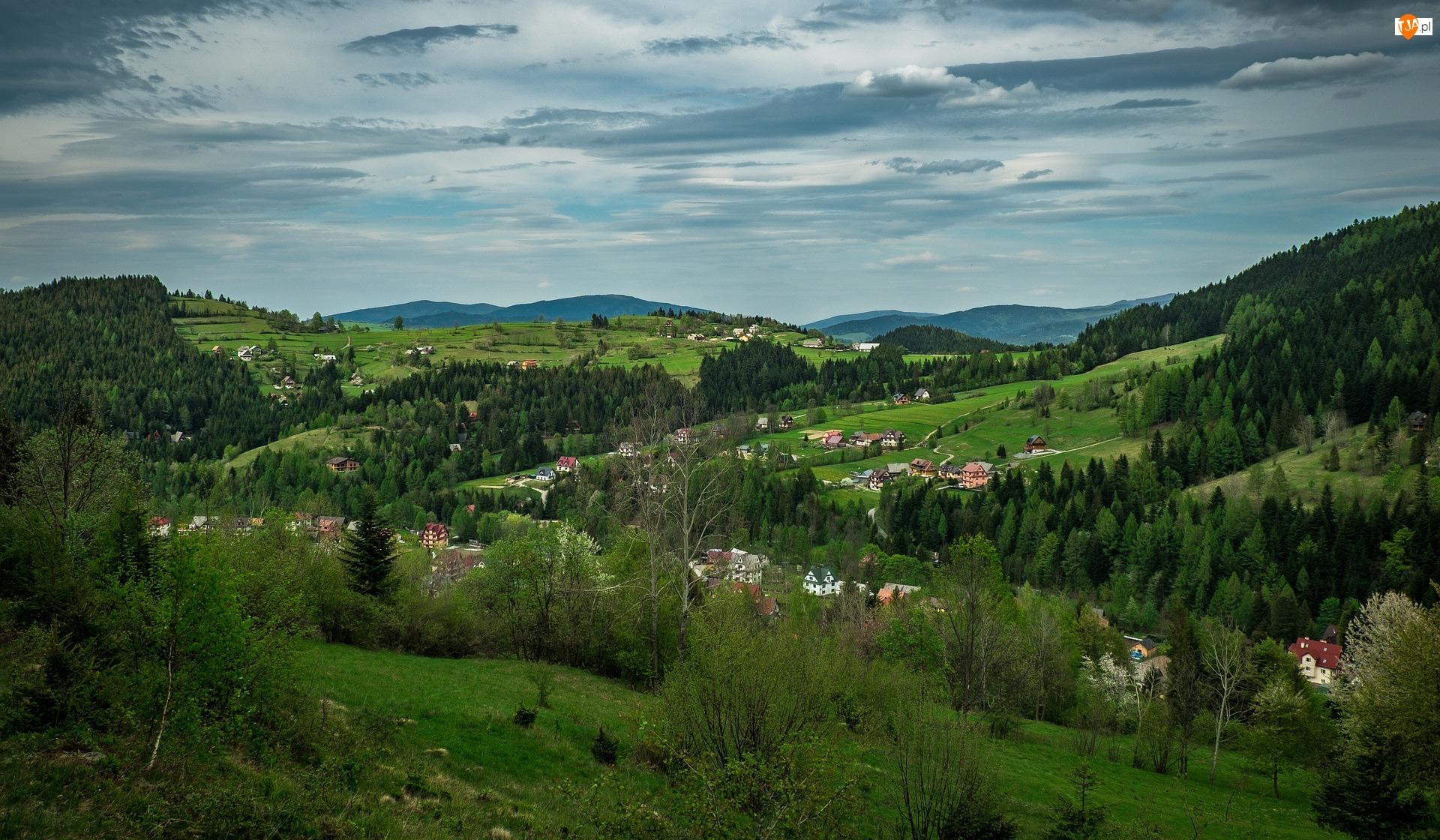 Beskidy, Góry Gorce, Wzgórza, Polska, Domy, Drzewa