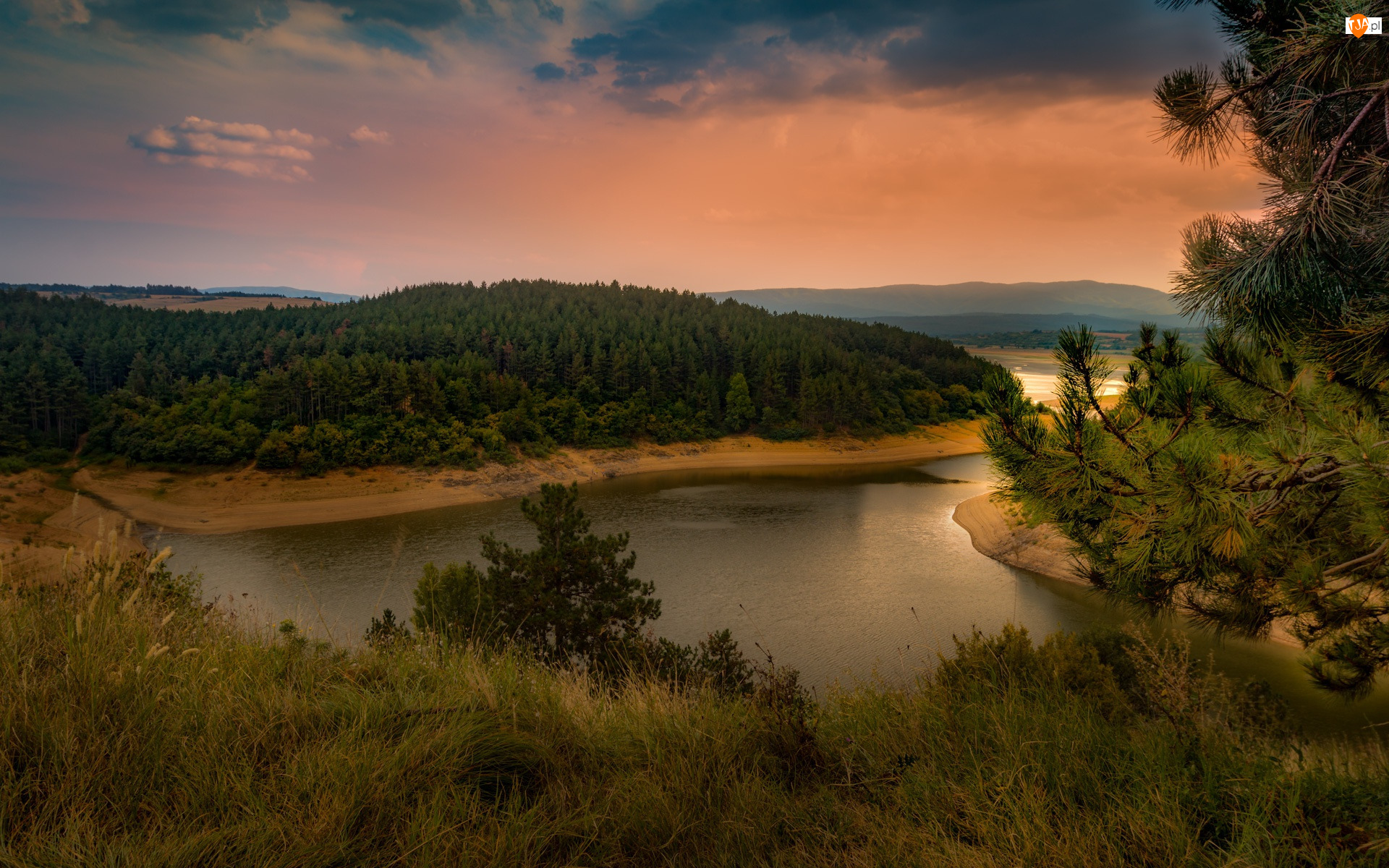 Drzewa, Jezioro, Chmury, Las, Wieczór, Zachód słońca, Trawa