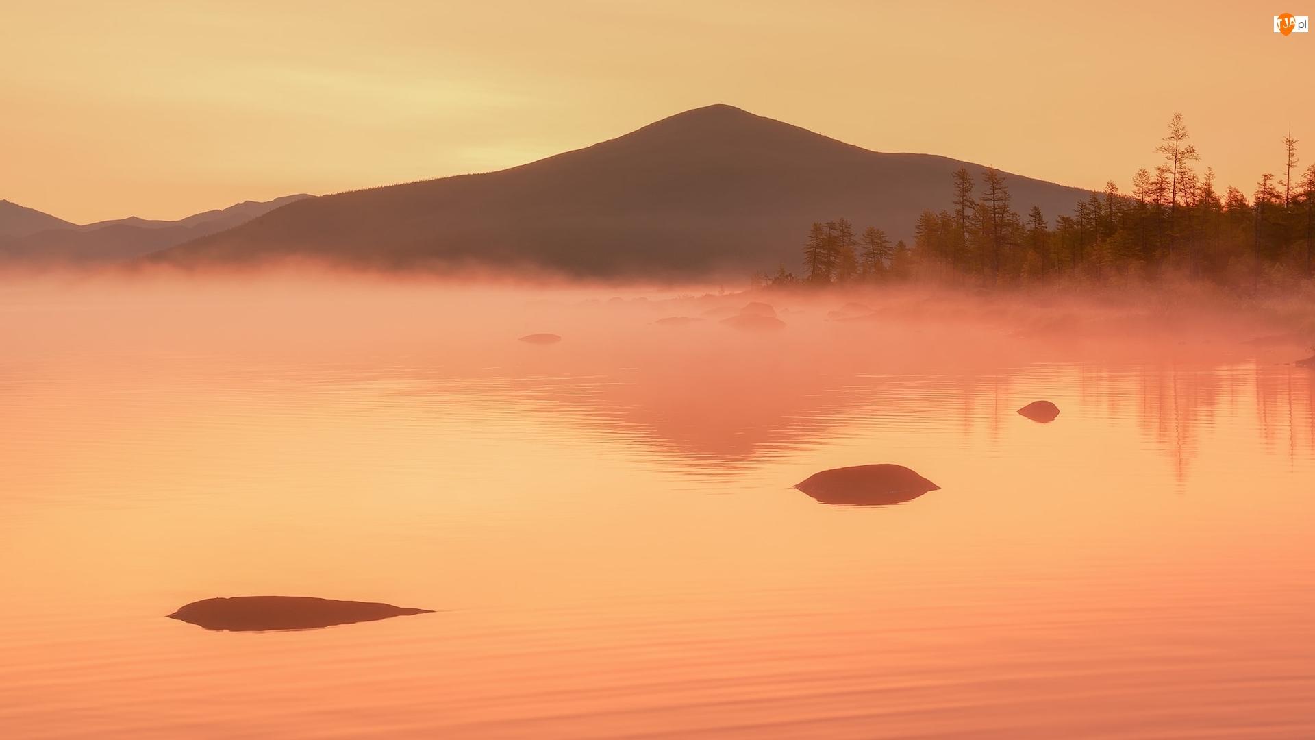 Trawa, Góry, Drzewa, Jezioro, Mgła