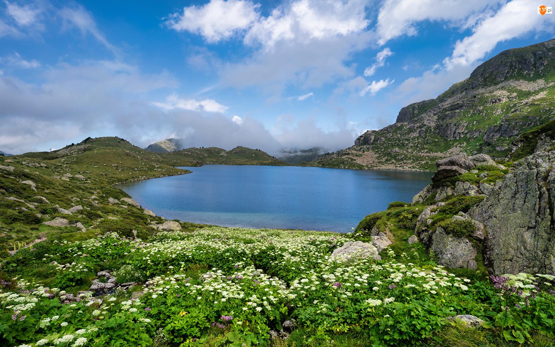 Chmury, Góry Pireneje, Rośliny, Skała, Kwiaty, Kamienie, Jezioro, Francja, Etang De Fontargentes