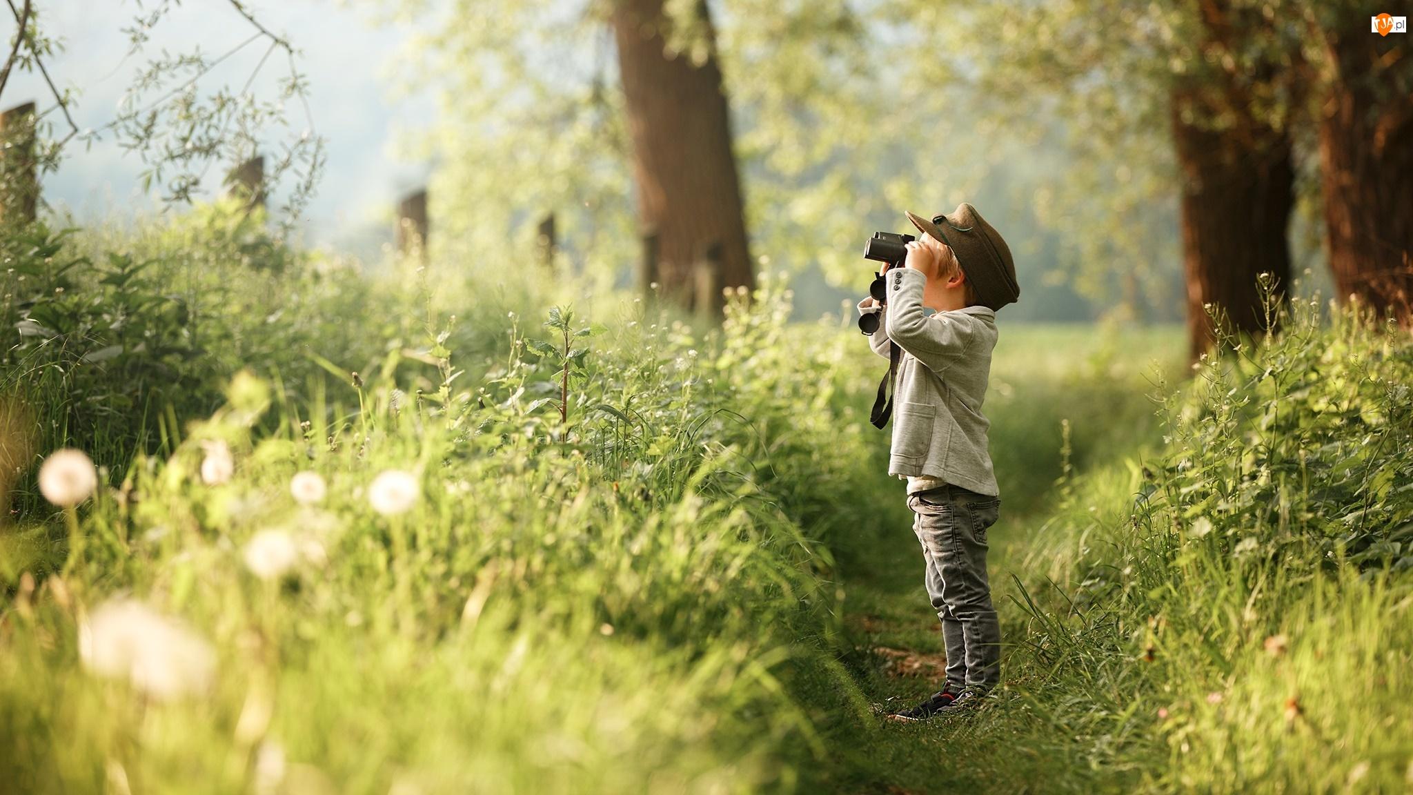 Rośliny, Dziecko, Lornetka, Ścieżka