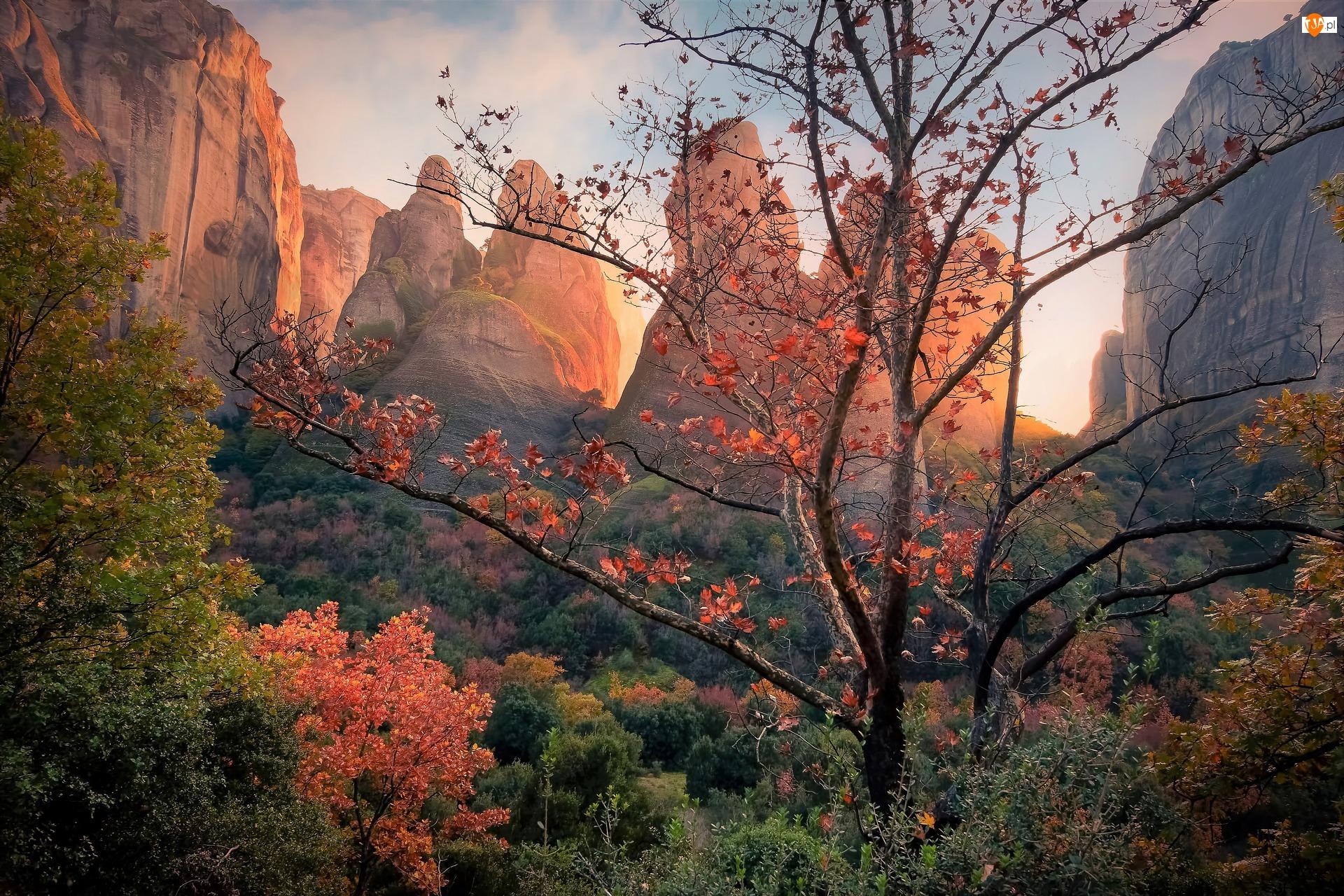 Góry, Grecja, Meteory, Jesień, Skały, Drzewa