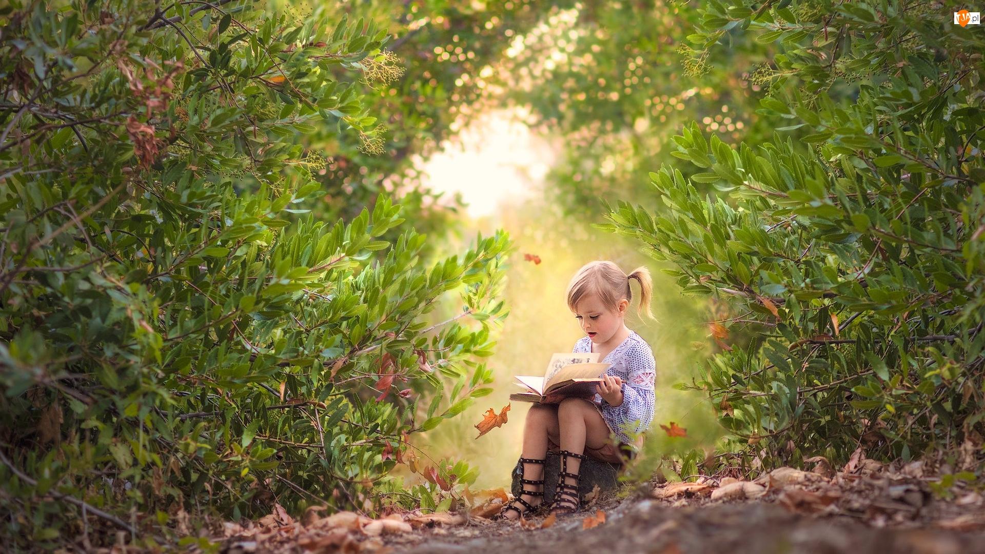 Krzewy, Dziewczynka, Książka, Ścieżka