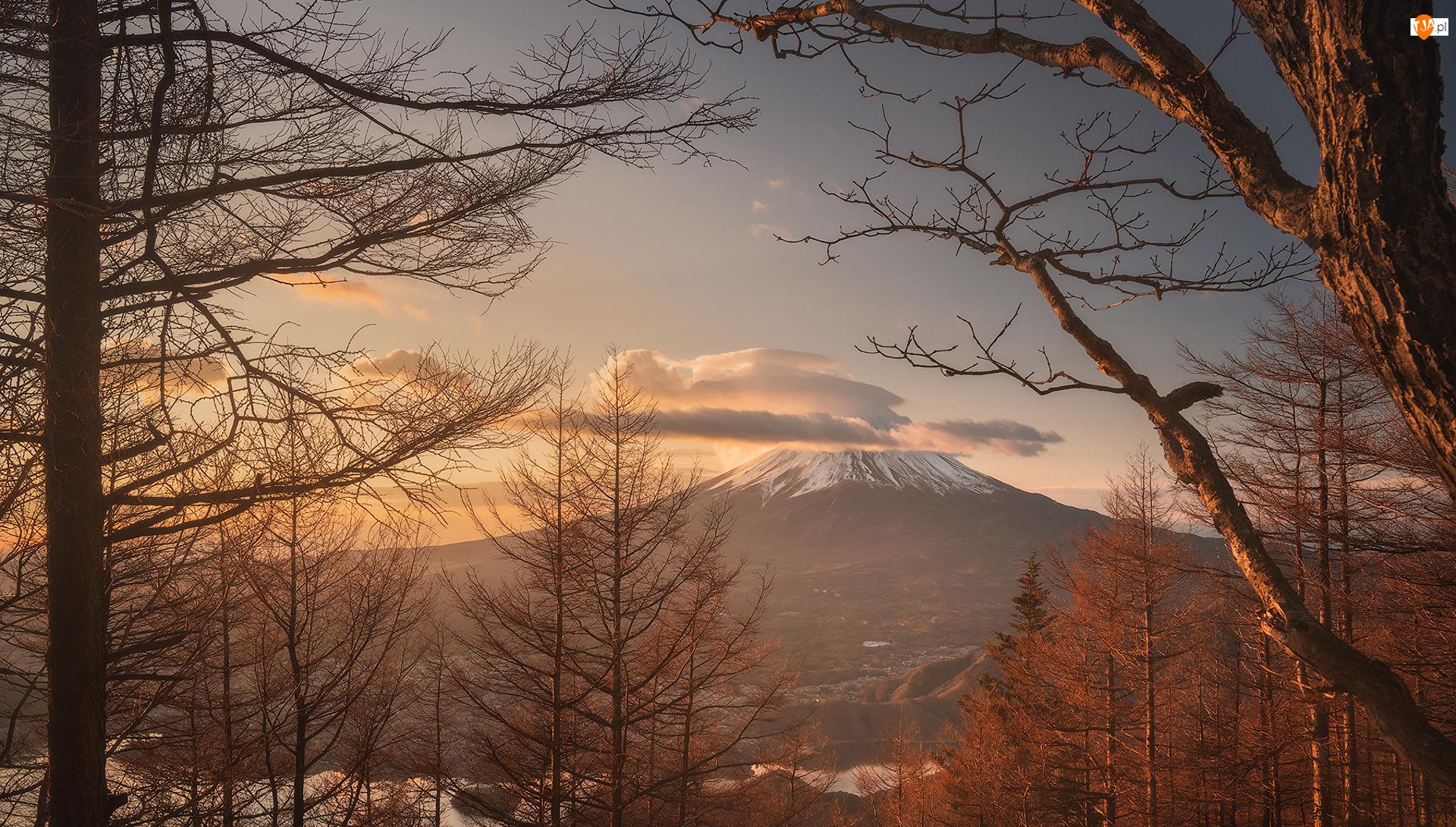 Góra, Stratowulkan, Japonia, Drzewa, Wyspa Honsiu, Chmury, Fudżi