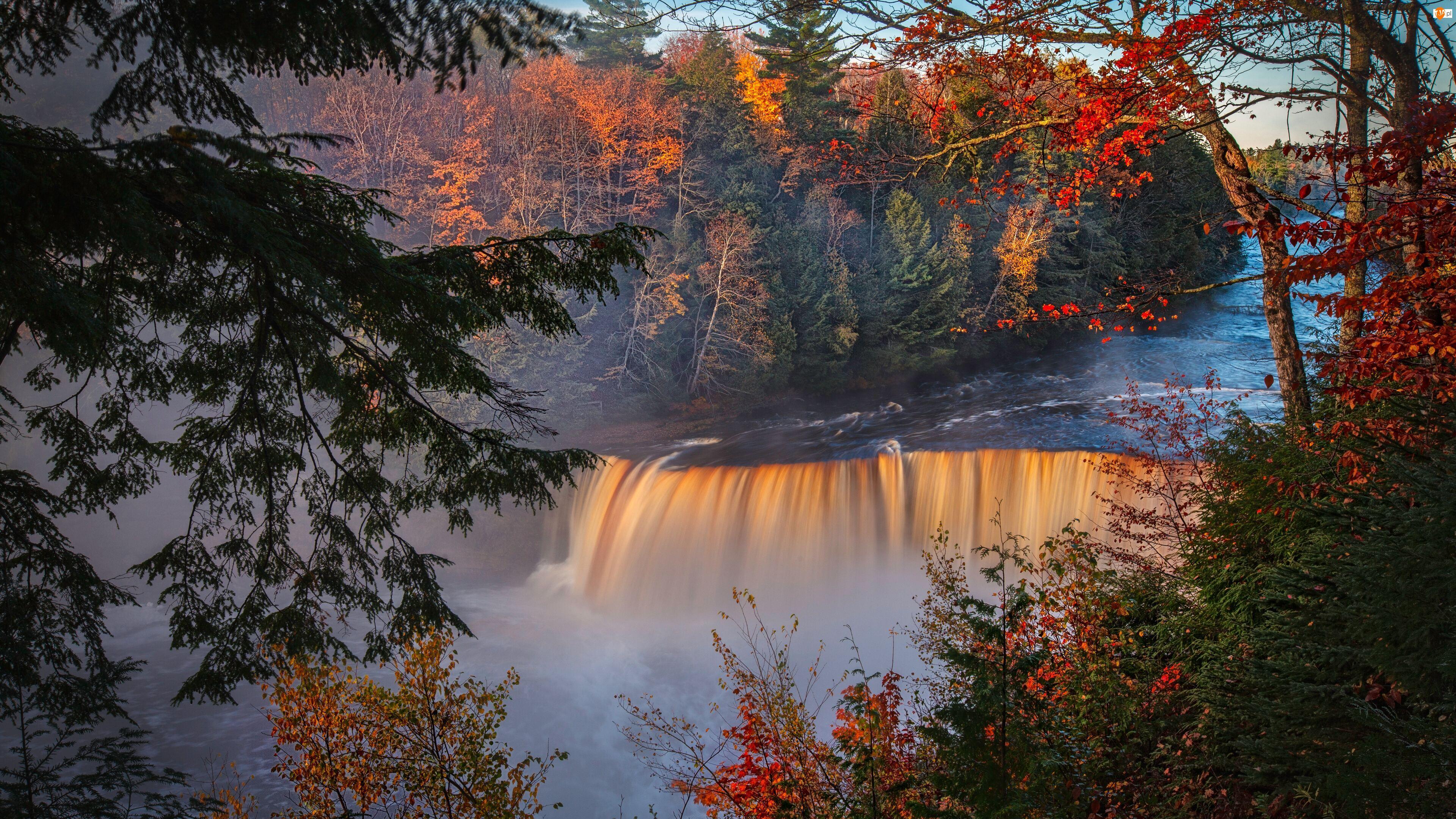 Stany Zjednoczone, Tahquamenon Falls, Stan Michigan, Jesień, Miejscowość Paradise, Las, Drzewa, Wodospad, Rzeka Tahquamenon