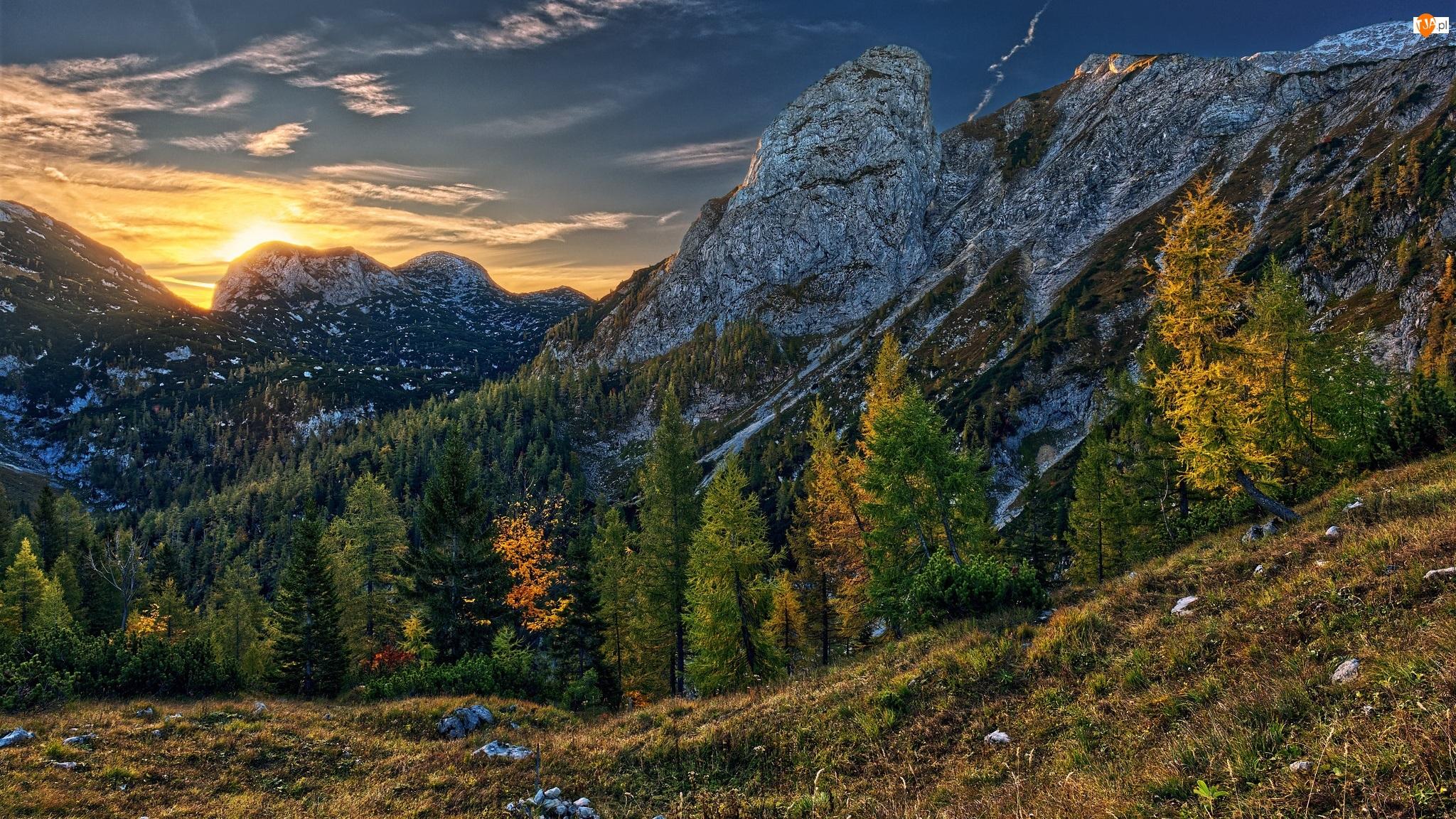 Trawa, Wschód słońca, Góry, Drzewa