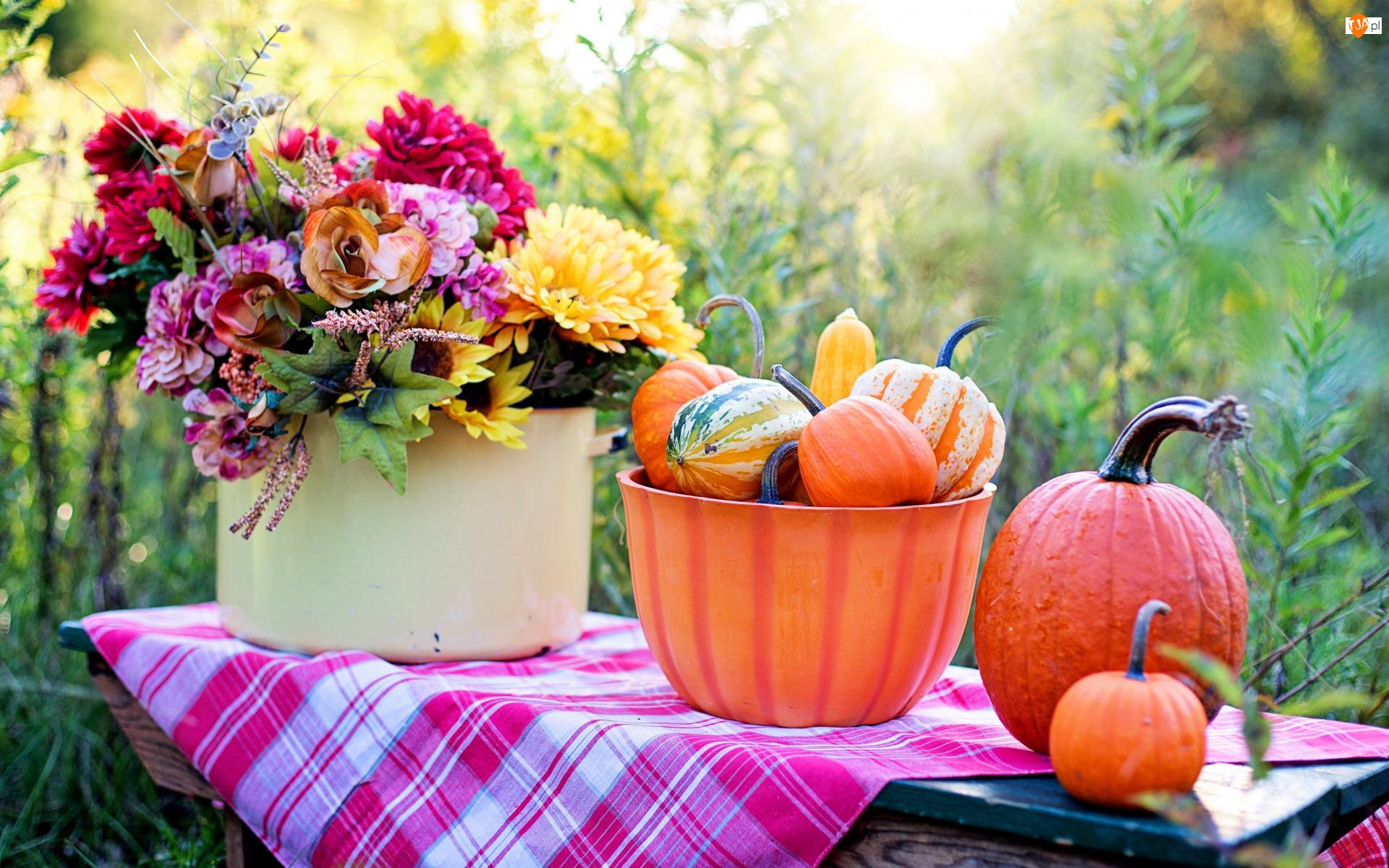 Jesień, Dynie, Kompozycja, Ogród, Bukiet, Kwiaty, Miska