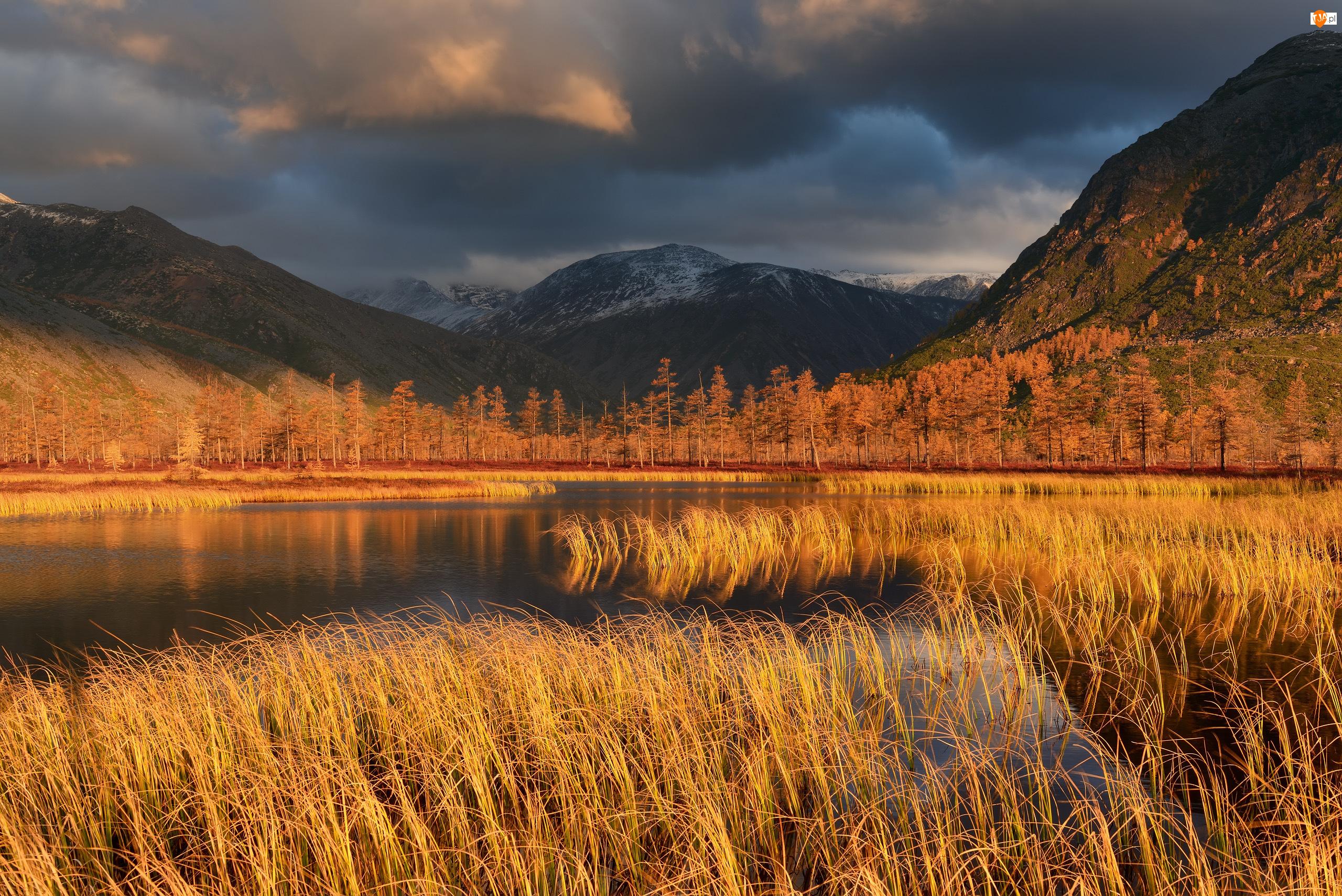 Rosja, Jesień, Kołyma, Chmury, Drzewa, Góry Kołymskie, Trawa, Krzewy, Jezioro, Obwód magadański