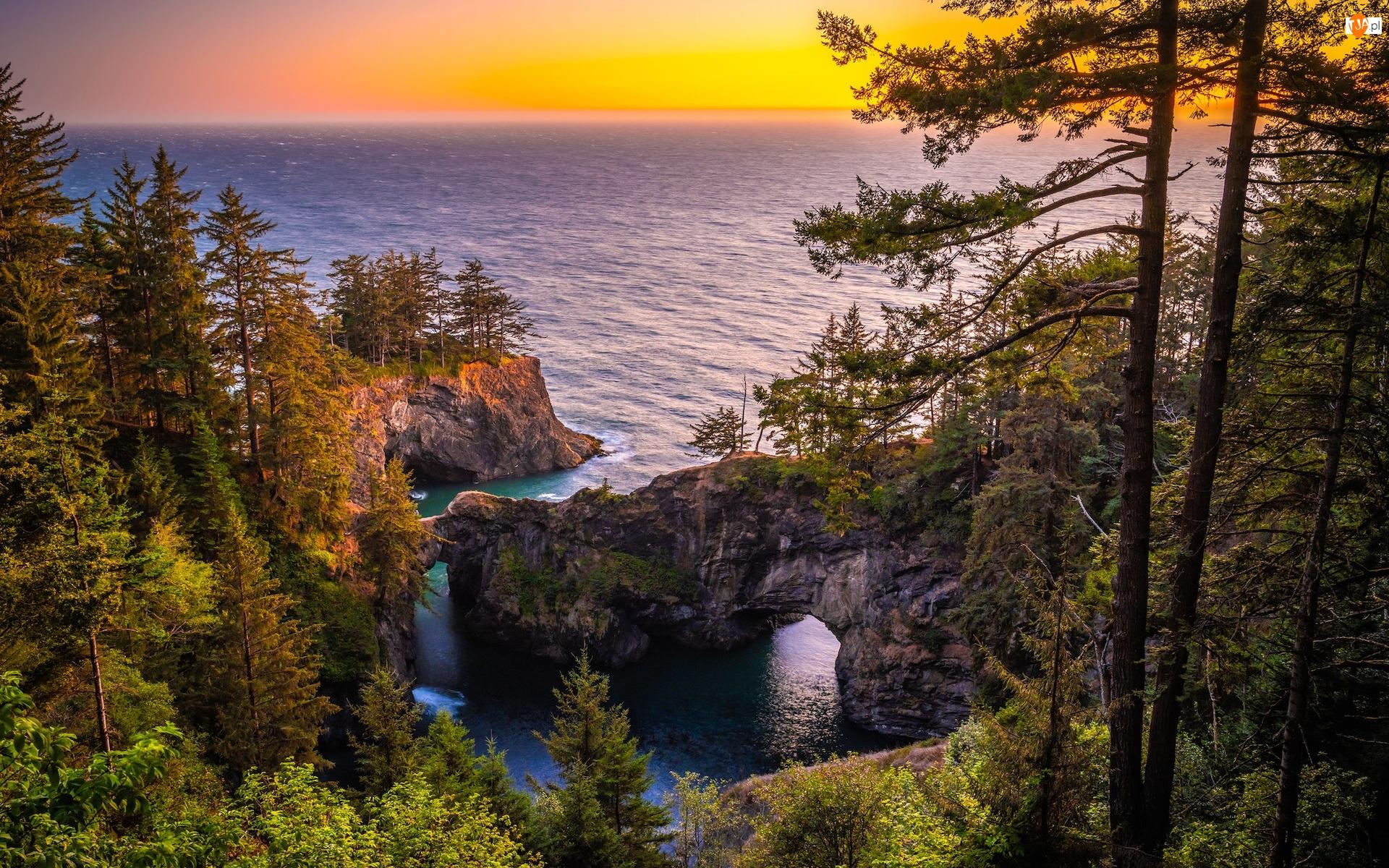 Morze, Samuel H. Boardman State Scenic Corridor, Brookings, Punkt widokowy, Most skalny, Oregon, Wybrzeże Park stanowy, Skały, Natural Bridges Viewpoint, Drzewa, Stany Zjednoczone