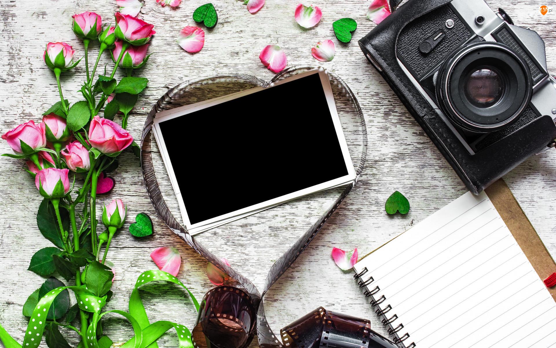 Róże, Notes, Zdjęcie, Kwiaty, Aparat fotograficzny
