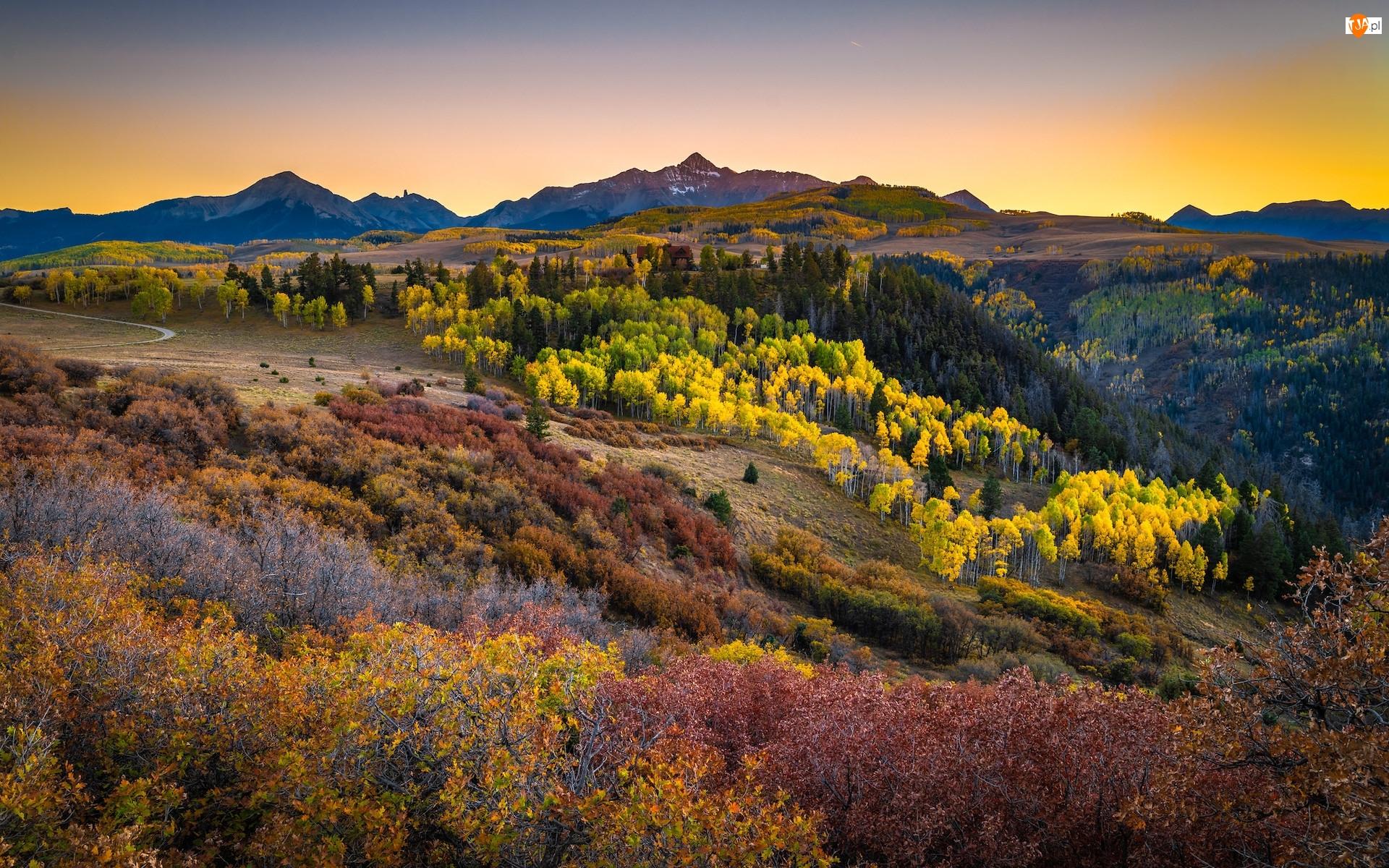 Jesień, Stan Kolorado, Las, Krzewy, Góry, Stany Zjednoczone, Góry, Wilson Peak, Telluride, San Juan Mountains, Góra, Drzewa