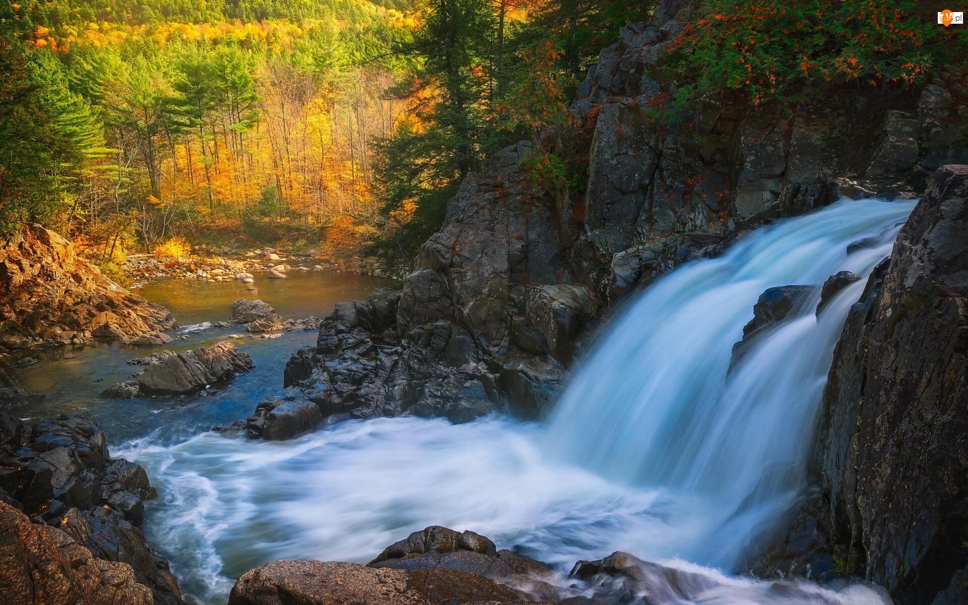 Rzeka, Skały, Jesień, Wodospad, Las, Drzewa, Kamienie