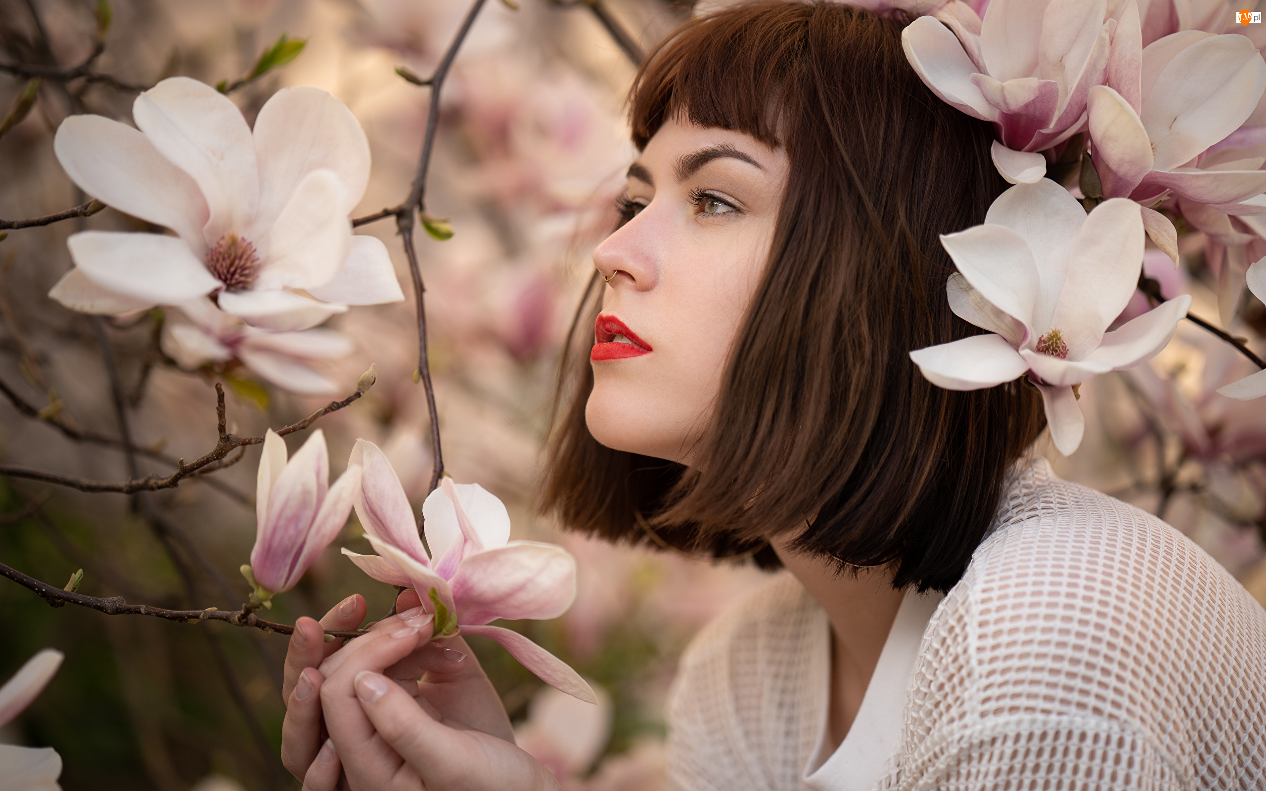 Kwiaty, Makijaż, Magnolia, Krzew, Kobieta