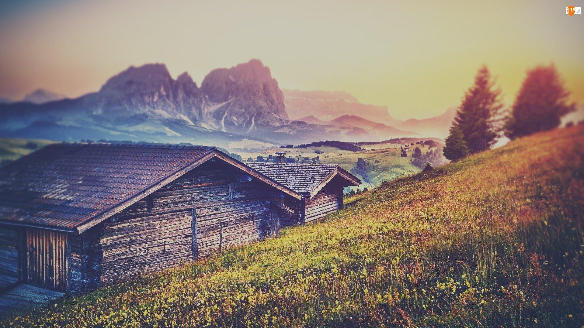Płaskowyż Seiser Alm, Dolomity, Mgła, Góry Sassolungo, Domki, Rozmycie, Dolina Val Gardena, Drewniane, Drzewa, Łąka, Włochy