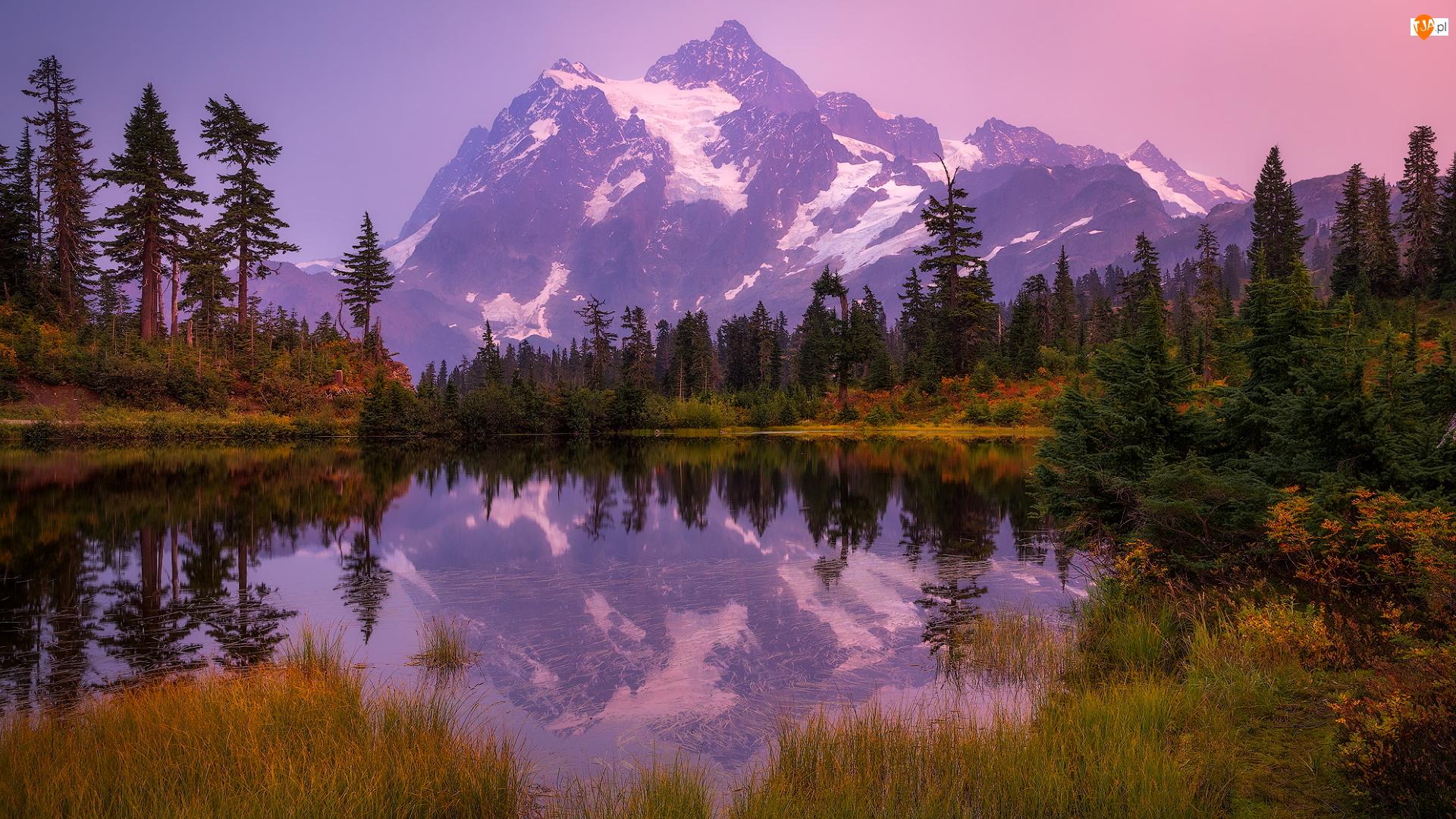 Stany Zjednoczone, Góry, Stan Waszyngton, Picture Lake, Odbicie, Góra, Mount Shuksan Drzewa, Jesień, Jezioro