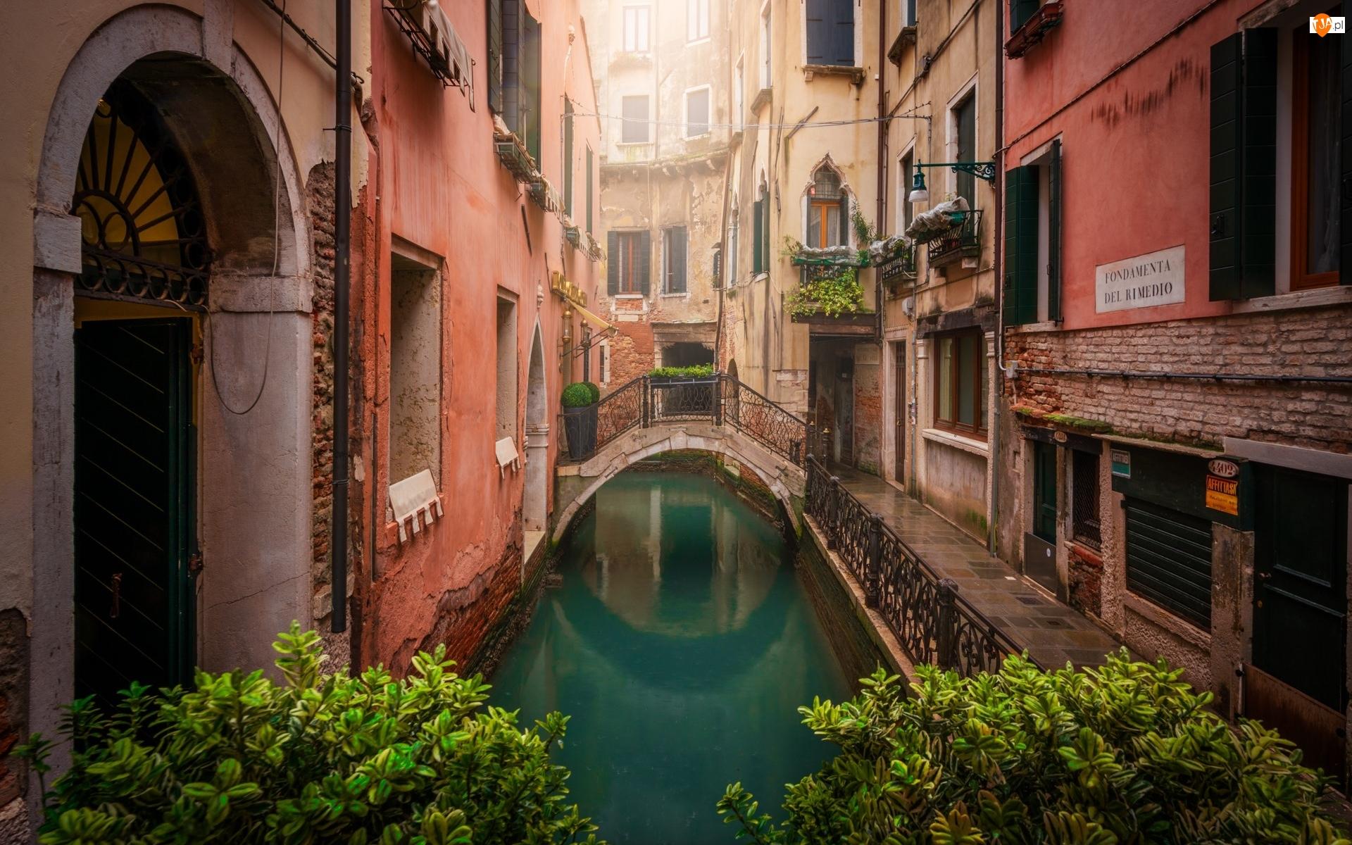 Wenecja, Włochy, Most, Roślinność, Domy, Kanał