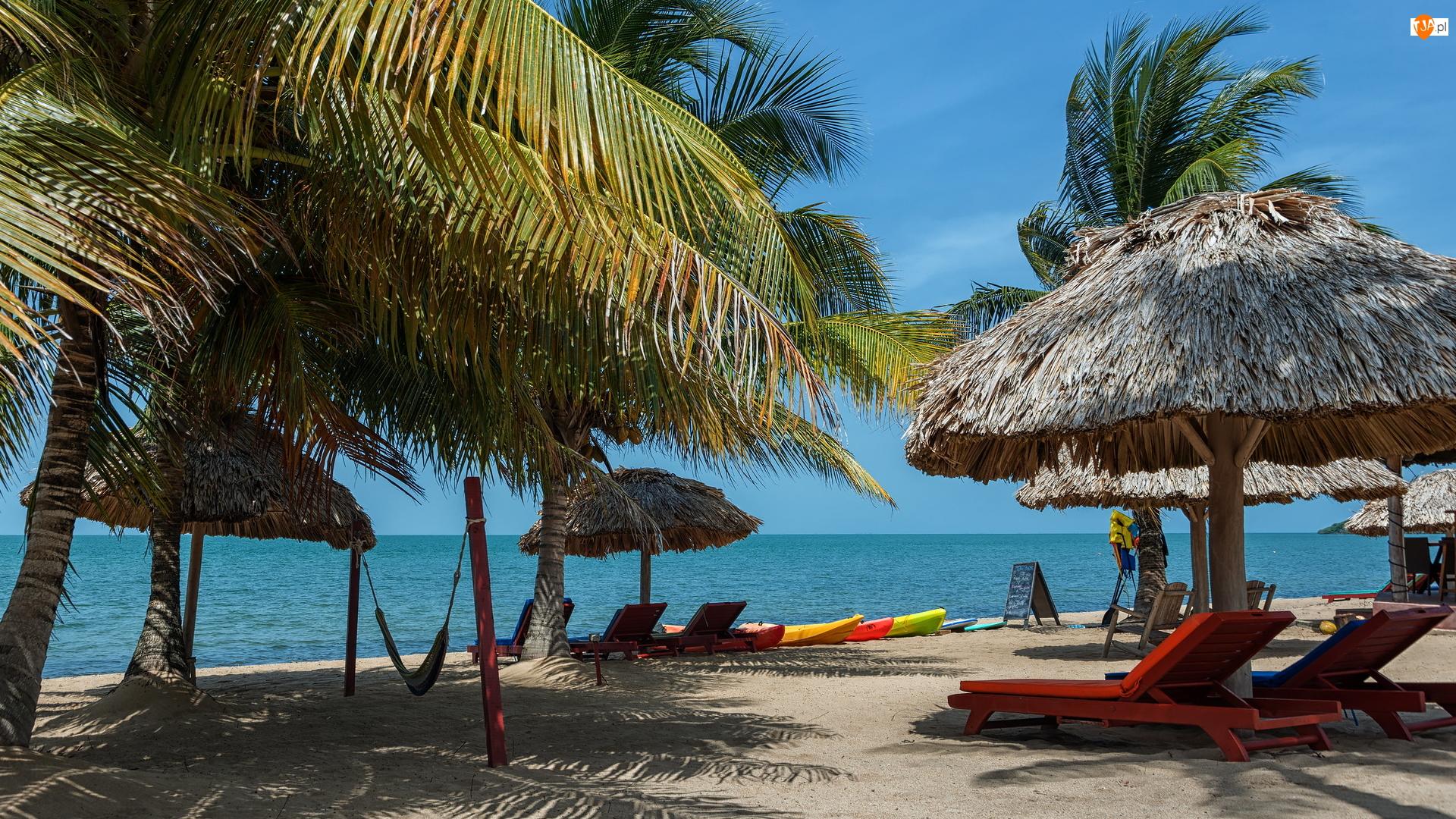 Parasole, Morze, Palmy, Plaża, Leżaki