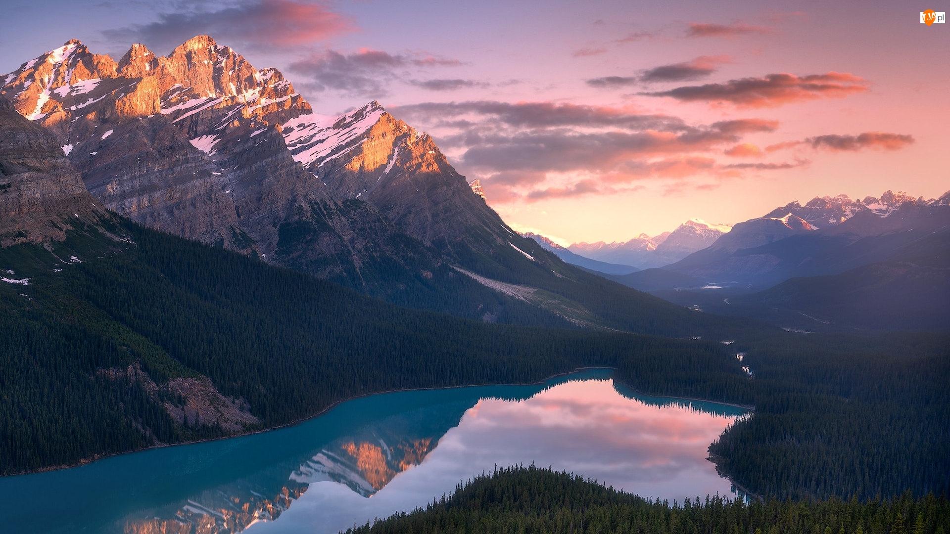 Odbicie, Park Narodowy Banff, Chmury, Canadian Rockies, Lasy, Jezioro, Peyto Lake, Kanada, Góry