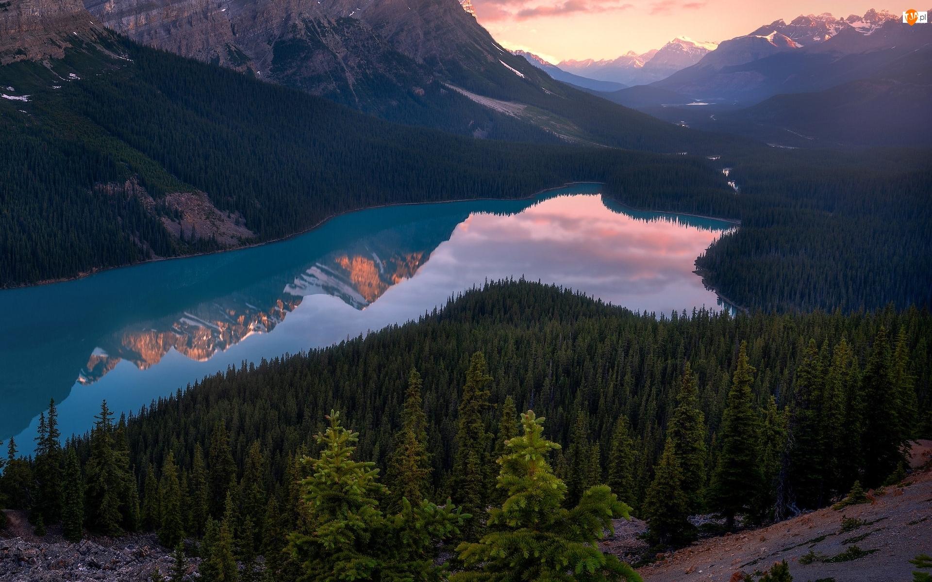 Lasy, Kanada, Góry Canadian Rockies, Zachód słońca, Park Narodowy Banff, Drzewa, Odbicie, Jezioro Peyto Lake