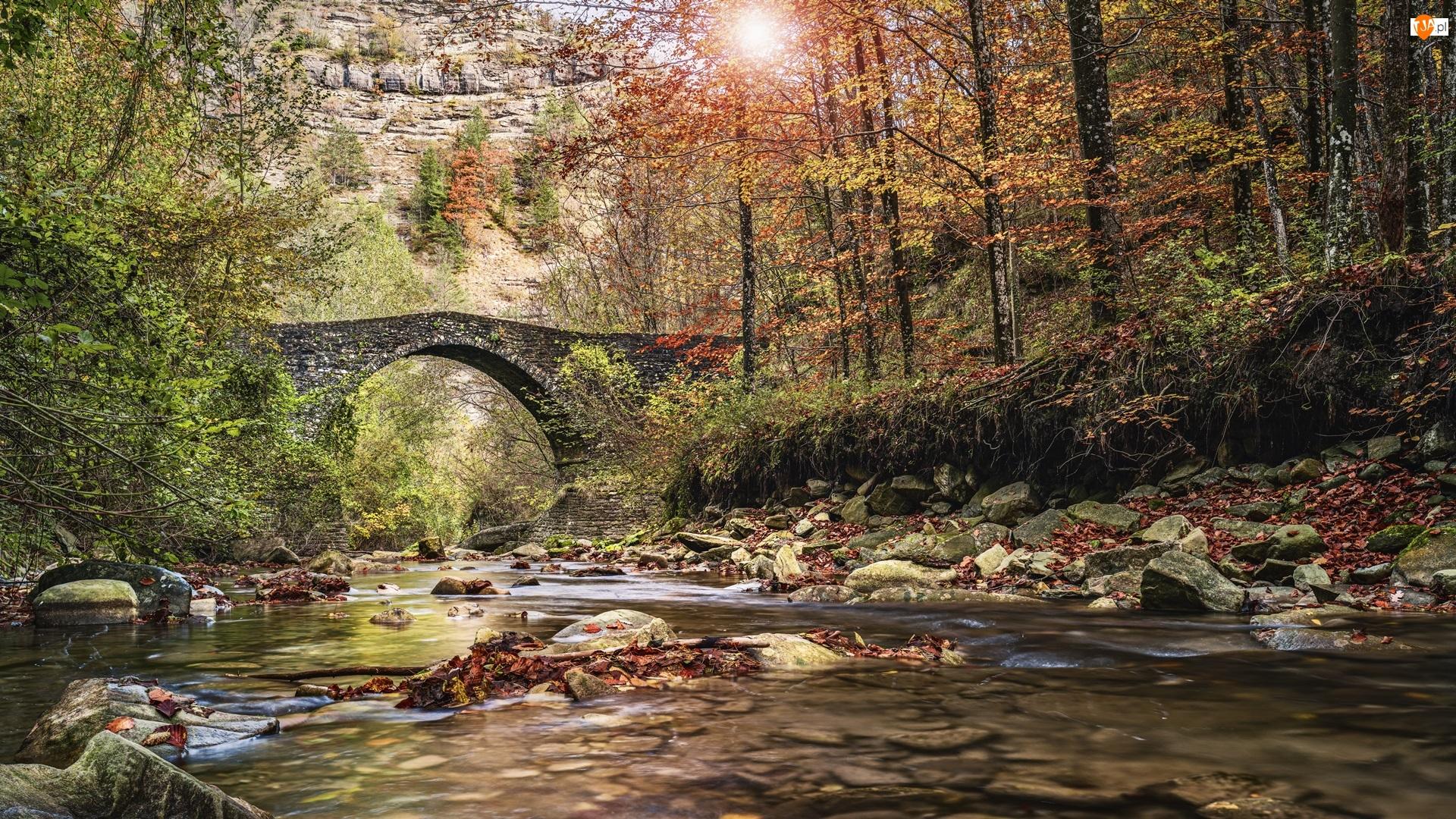 Kamienie, Most, Jesień, Rzeka, Liście, Las, Drzewa