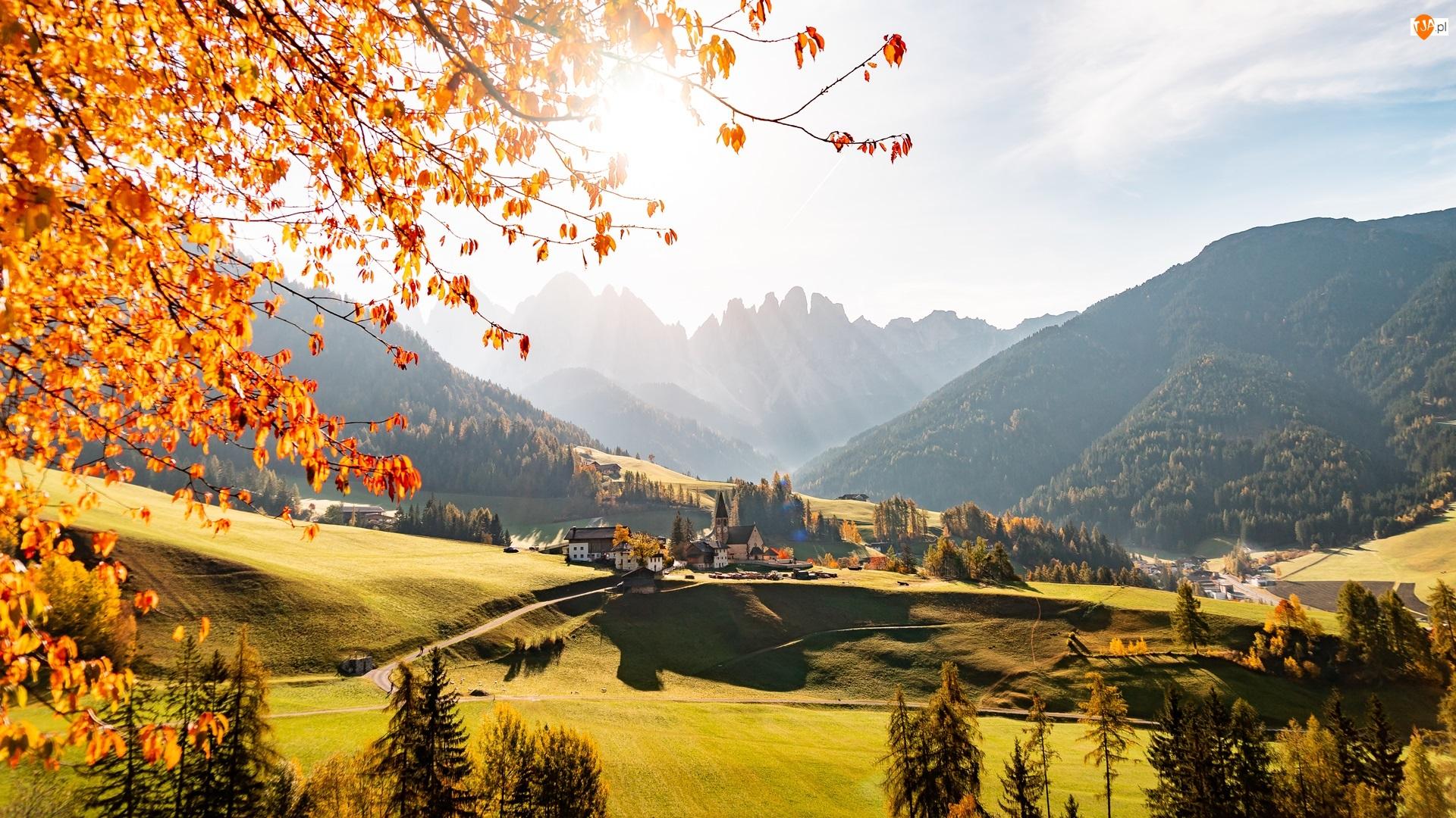 Lasy, Dolomity, Jesień, Włochy, Domy, Góry, Wieś, Drzewa, Masyw Odle, Santa Maddalena, Dolina Val di Funes, Kościół