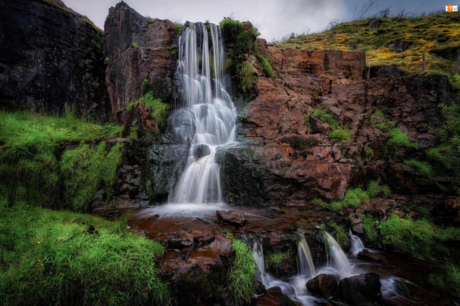 Roślinność, Wodospad, Skały, Zielona