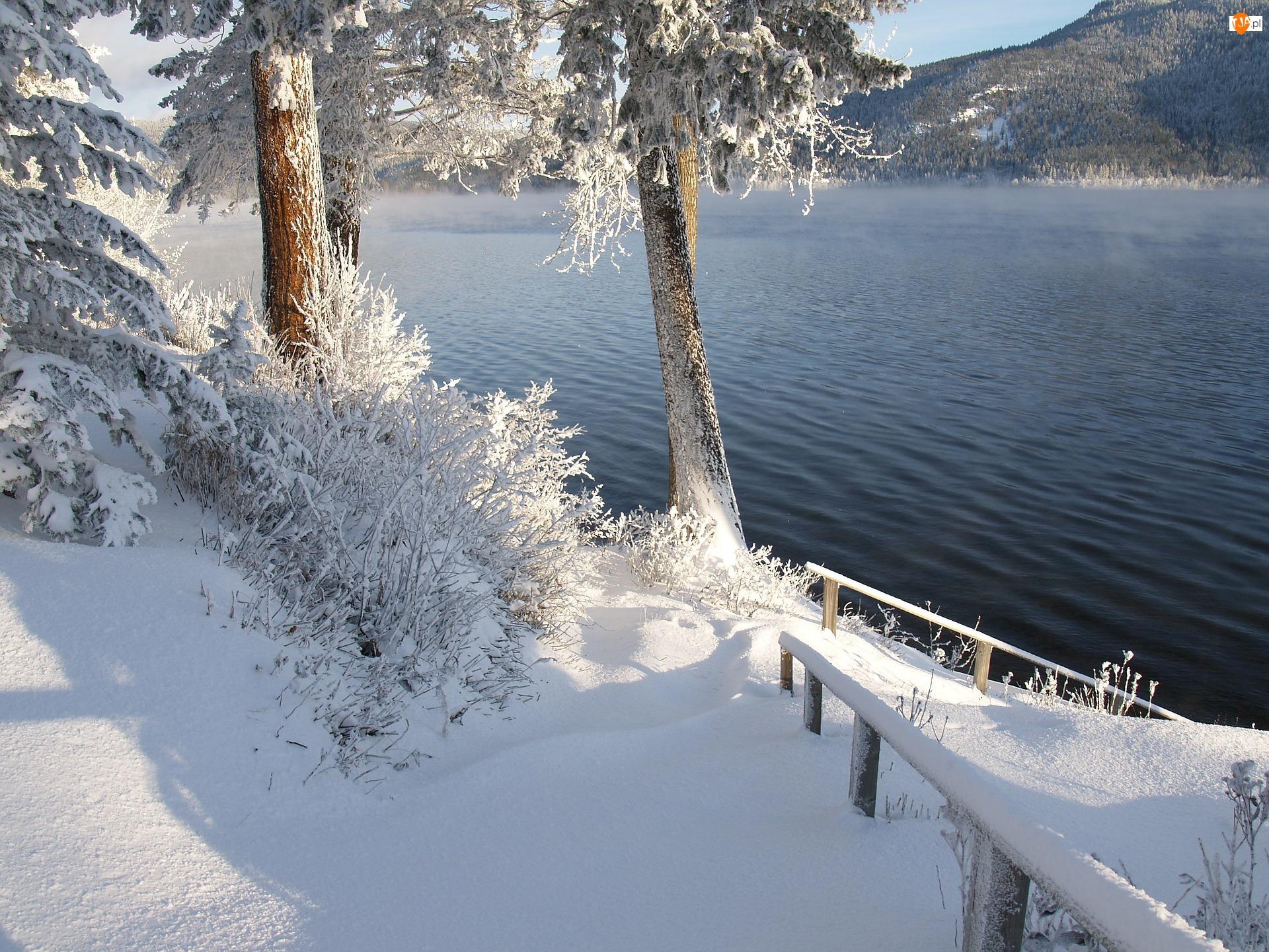 Kanada, Śnieg, Kolumbia Brytyjska, Jezioro, Canim Lake, Drzewa, Szron, Zima, Pogodny dzień