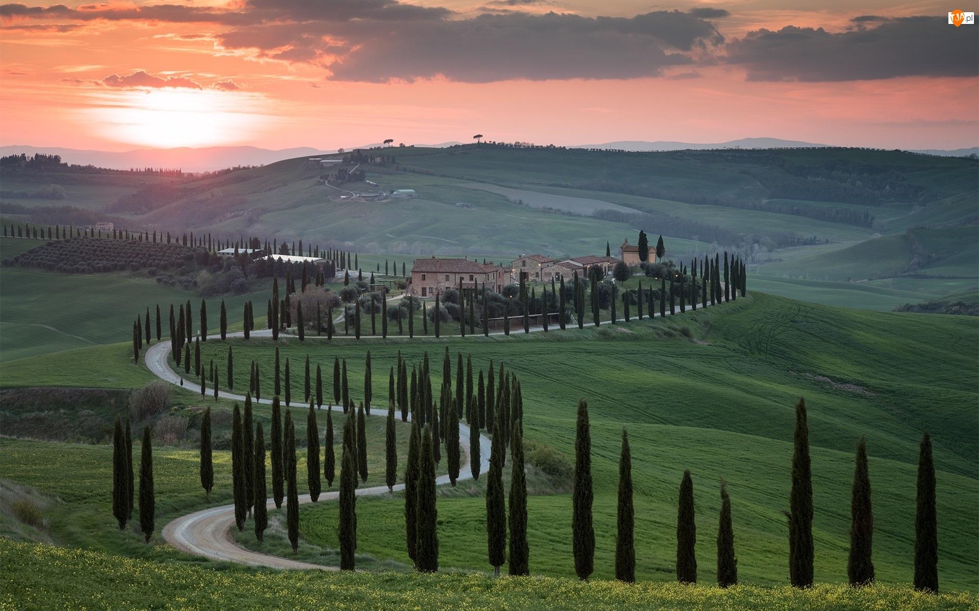 Włochy, Domy, Chmury, Toskania, Cyprysy, Drzewa, Droga