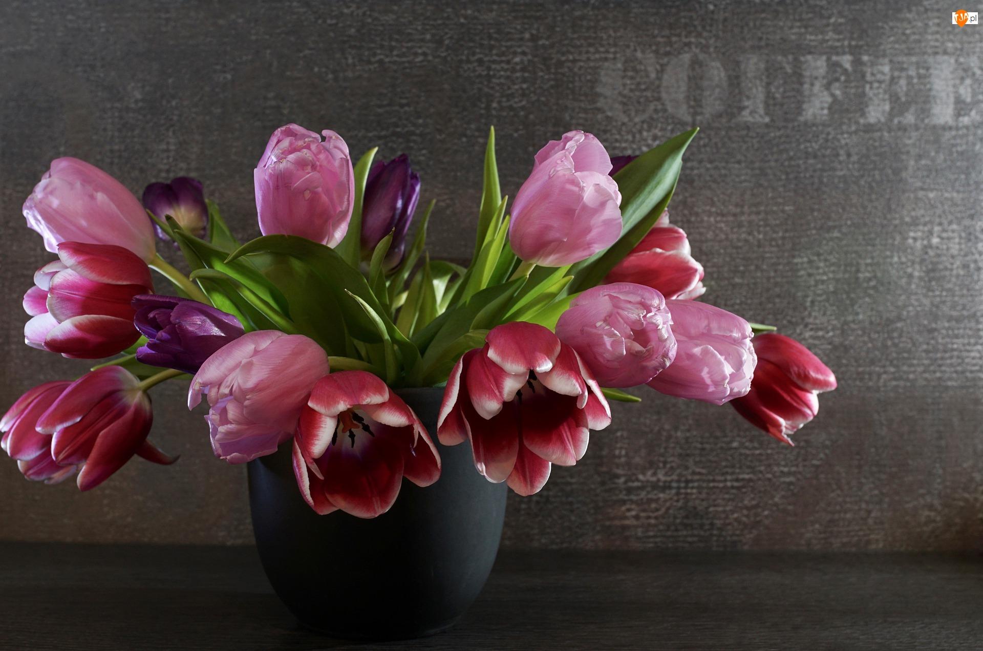 Tulipany, Kwiaty, Ciemne tło, Wazon, Bukiet, Napis
