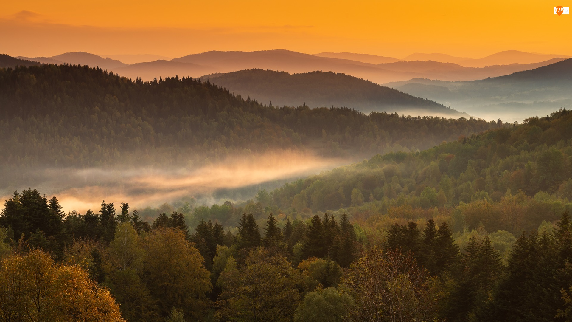 Mgła, Góry, Wzgórza, Lasy