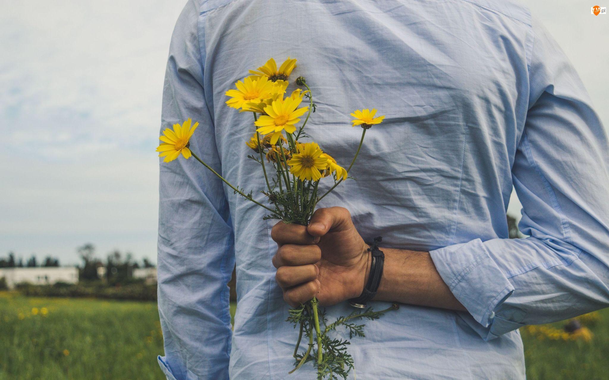 Kwiaty, Mężczyzna, Polne