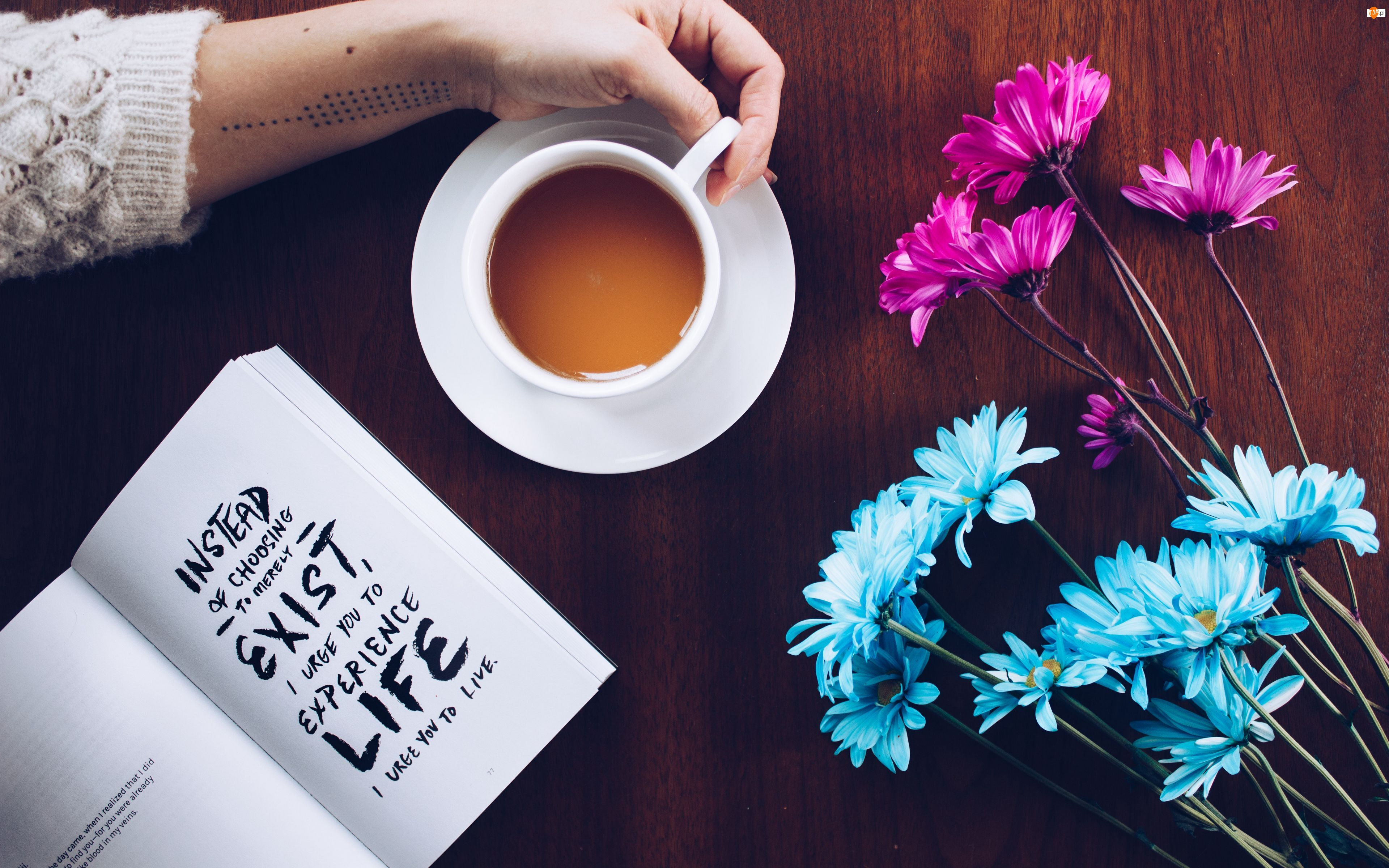Ręka, Kompozycja, Kawa, Książka, Kwiaty