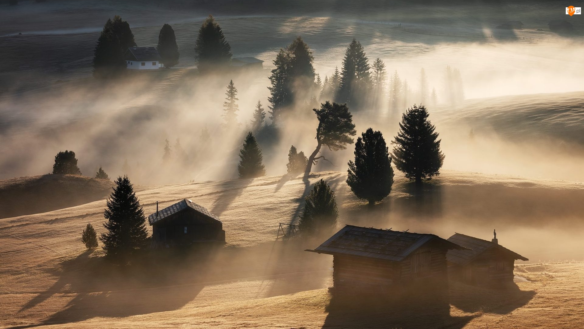 Mgła, Drewniane, Domy, Drzewa