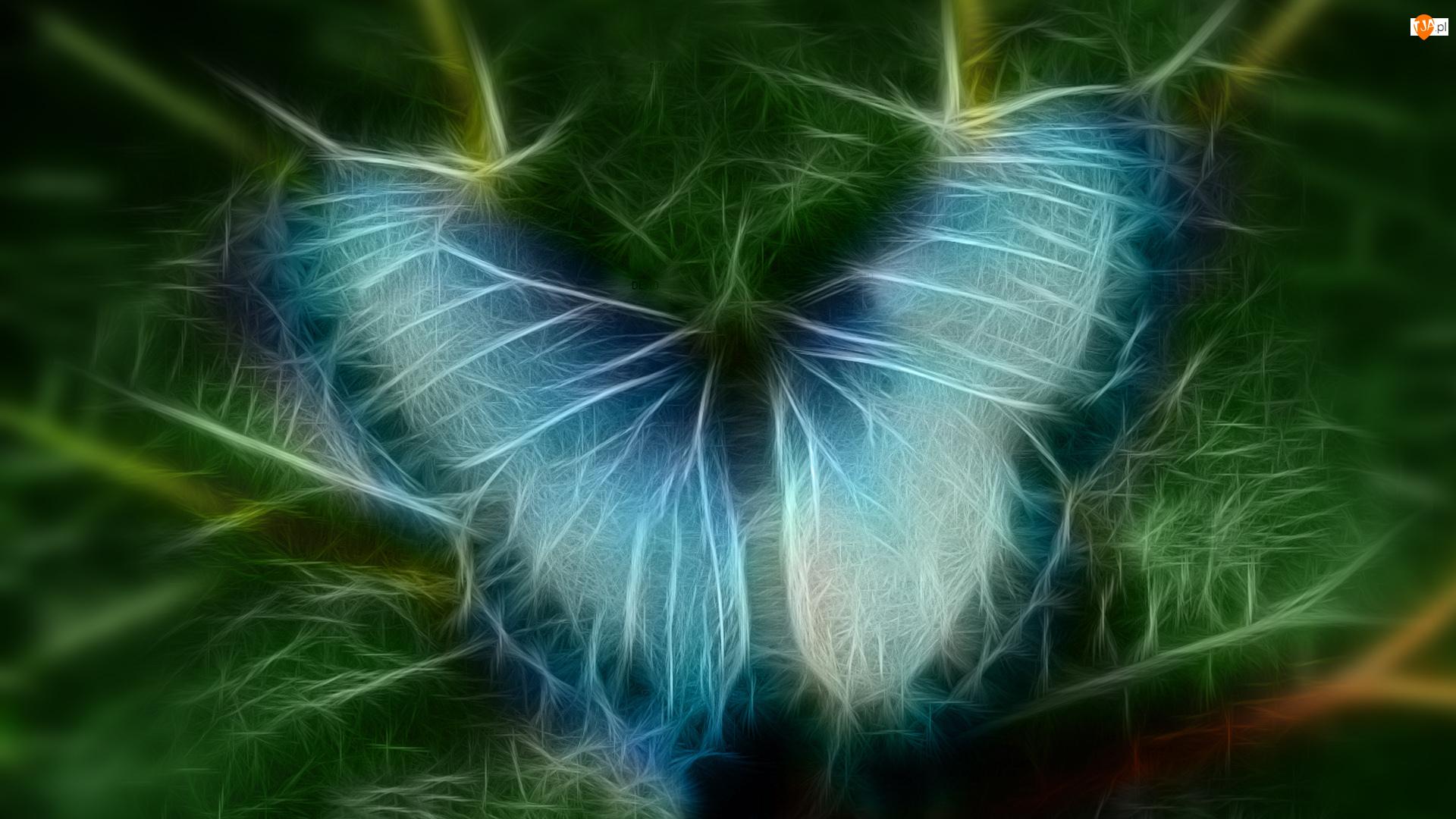 Fractalius, Niebieski, Motyl